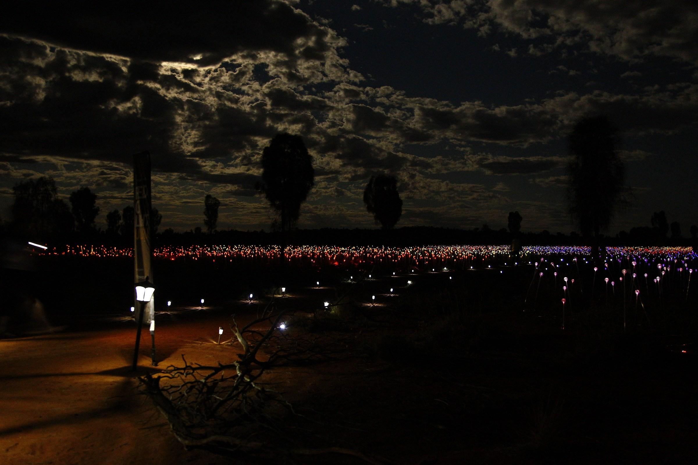 Field of Lights - Uluru...