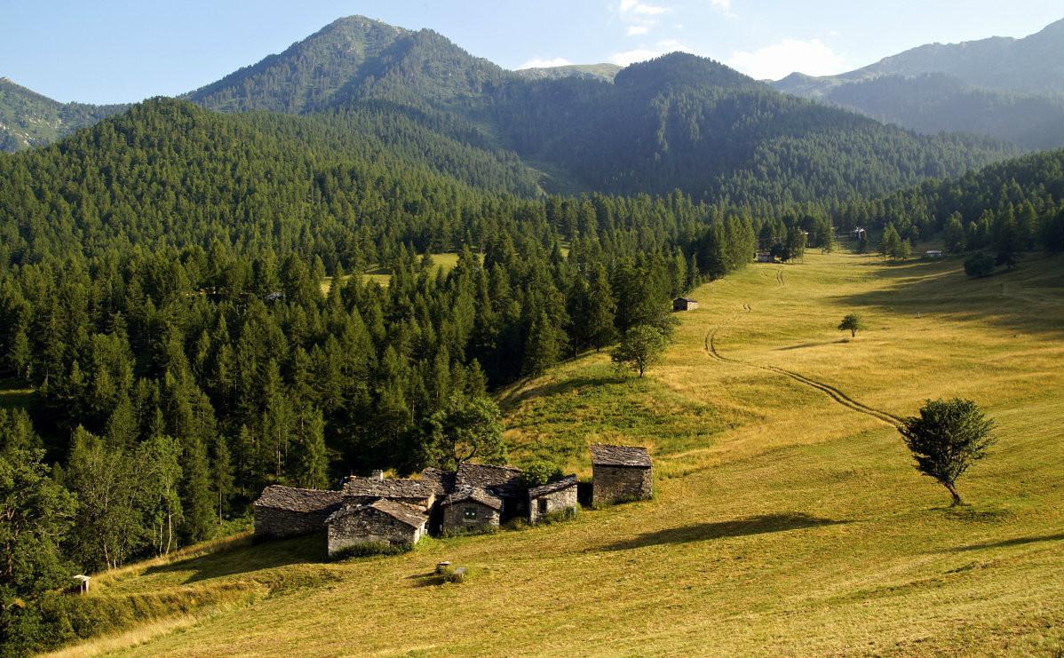 Alpine lodges in Sampeyre...