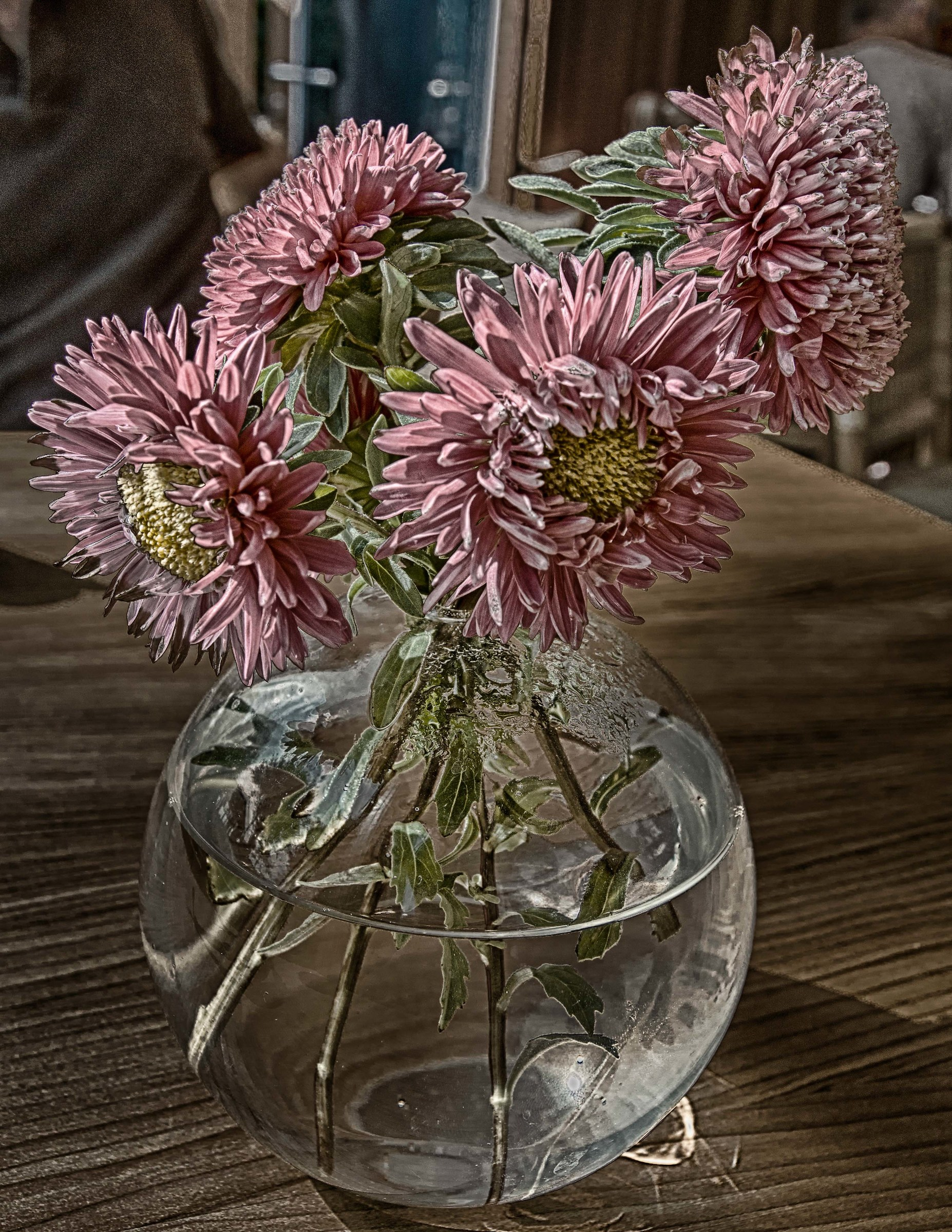 Asters on the table of a bar...