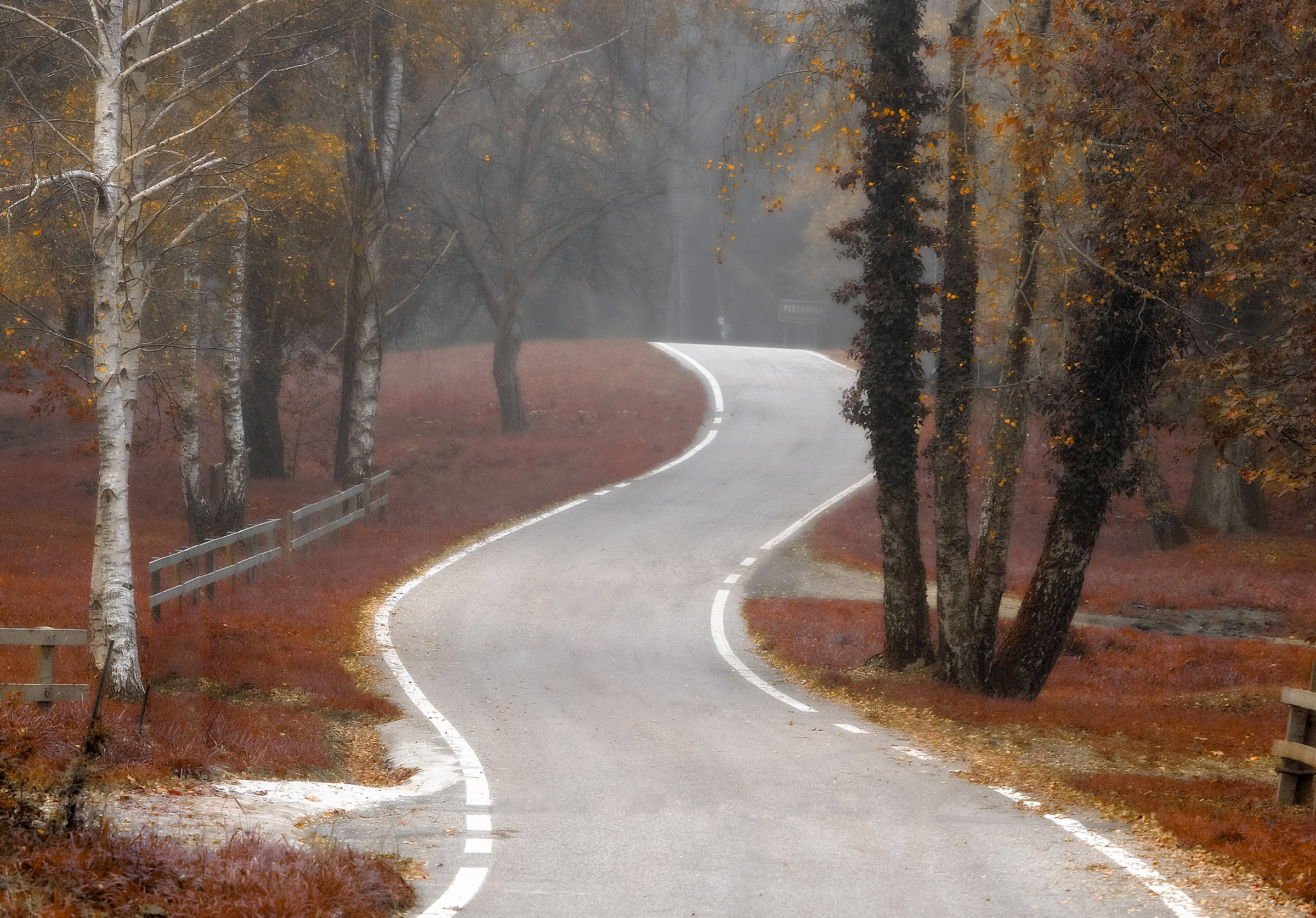 Sinuous road...