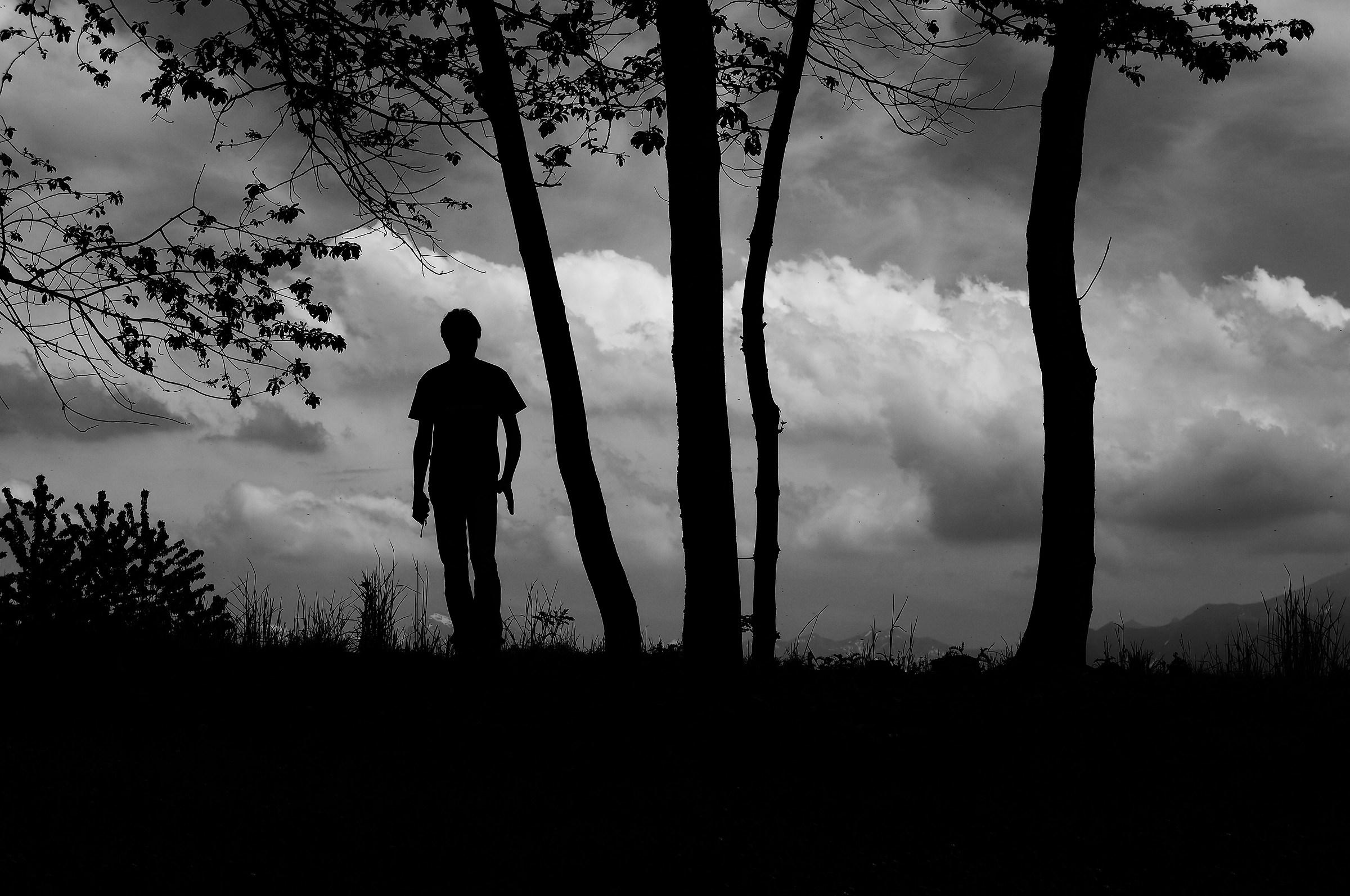 uomo tra gli alberi...