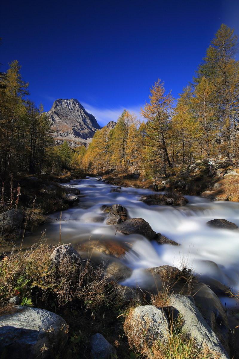 mountain Leone - alpe Veglia...