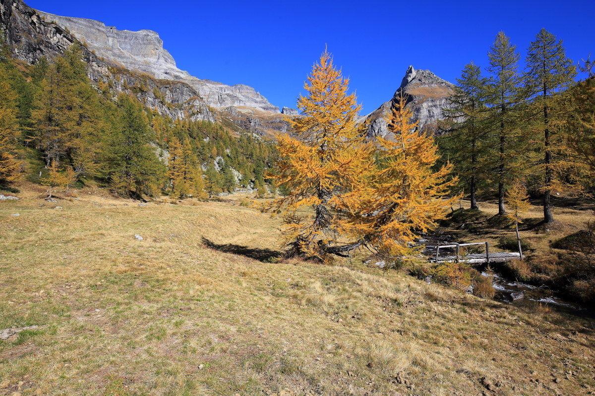 alpine Veglia...
