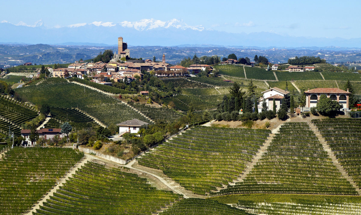 From the Castle of Serralunga d'Alba to Monte Rosa...