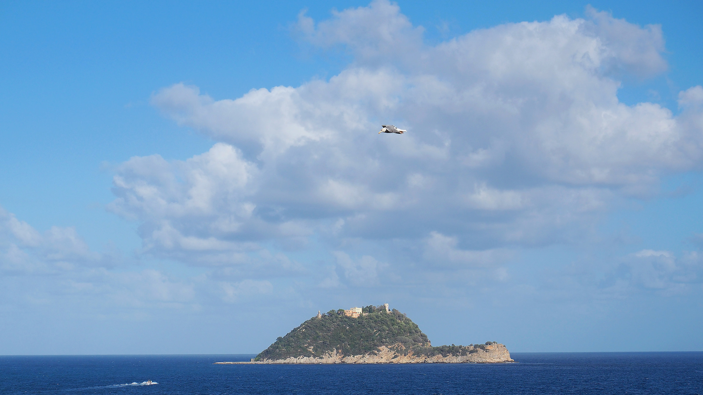 Gallinara Island...