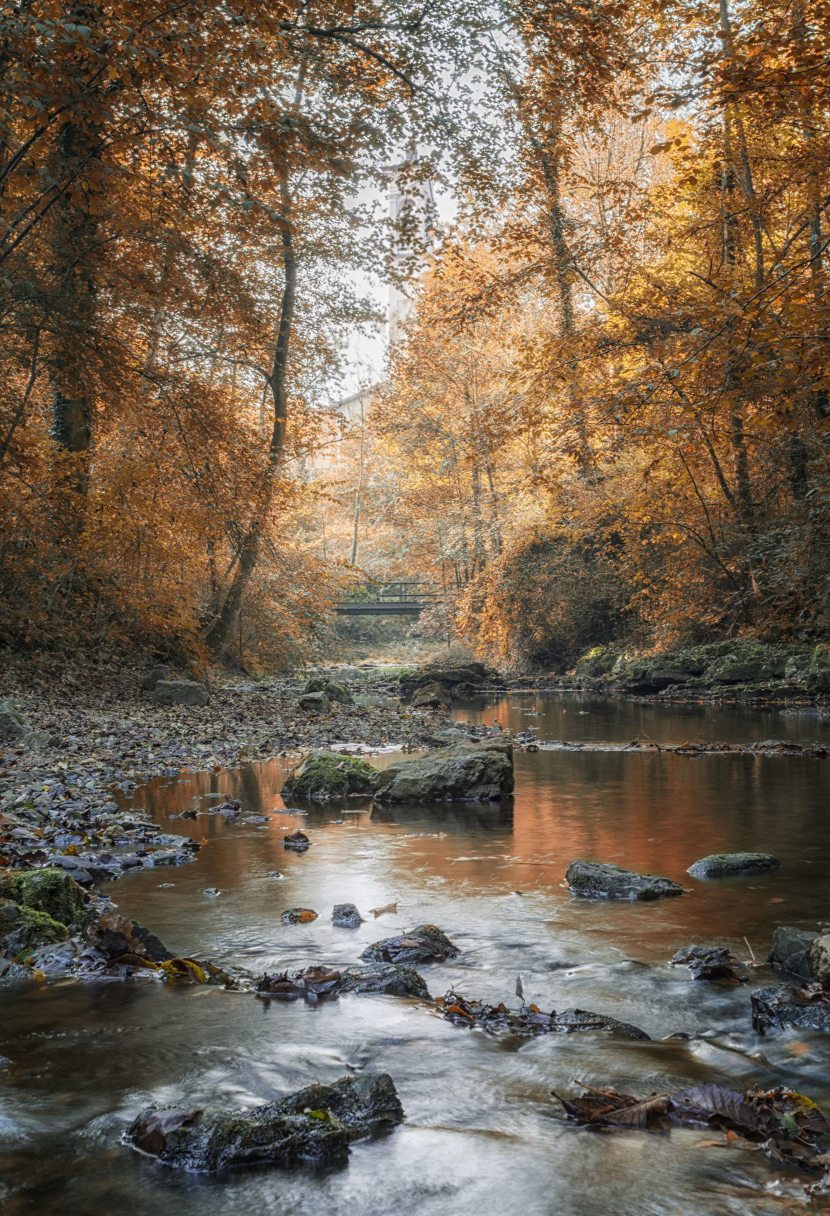 Autumnal mood...