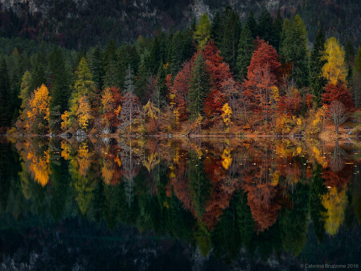 Autumn in Tovel...