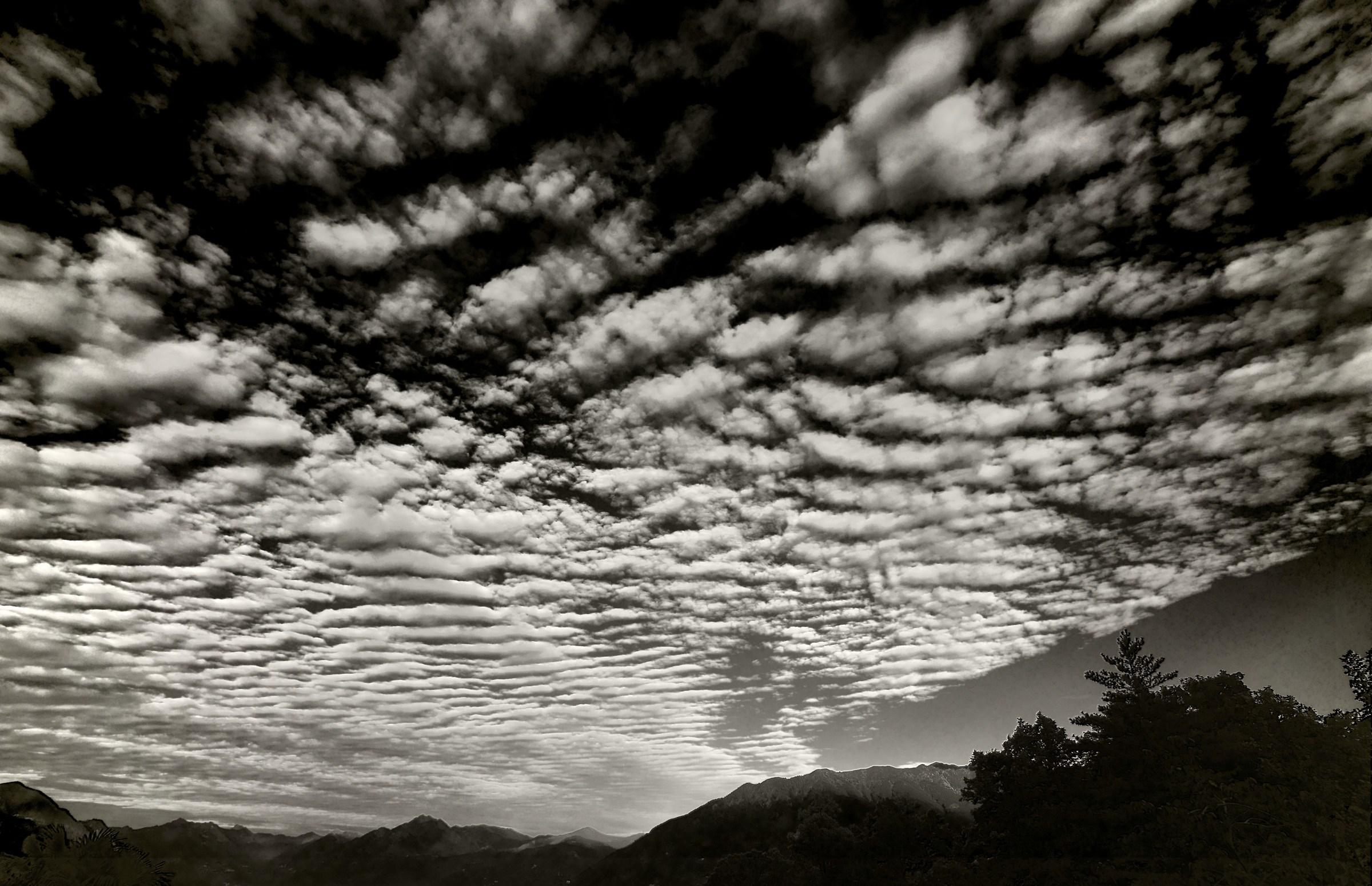 Sheep Sky ......