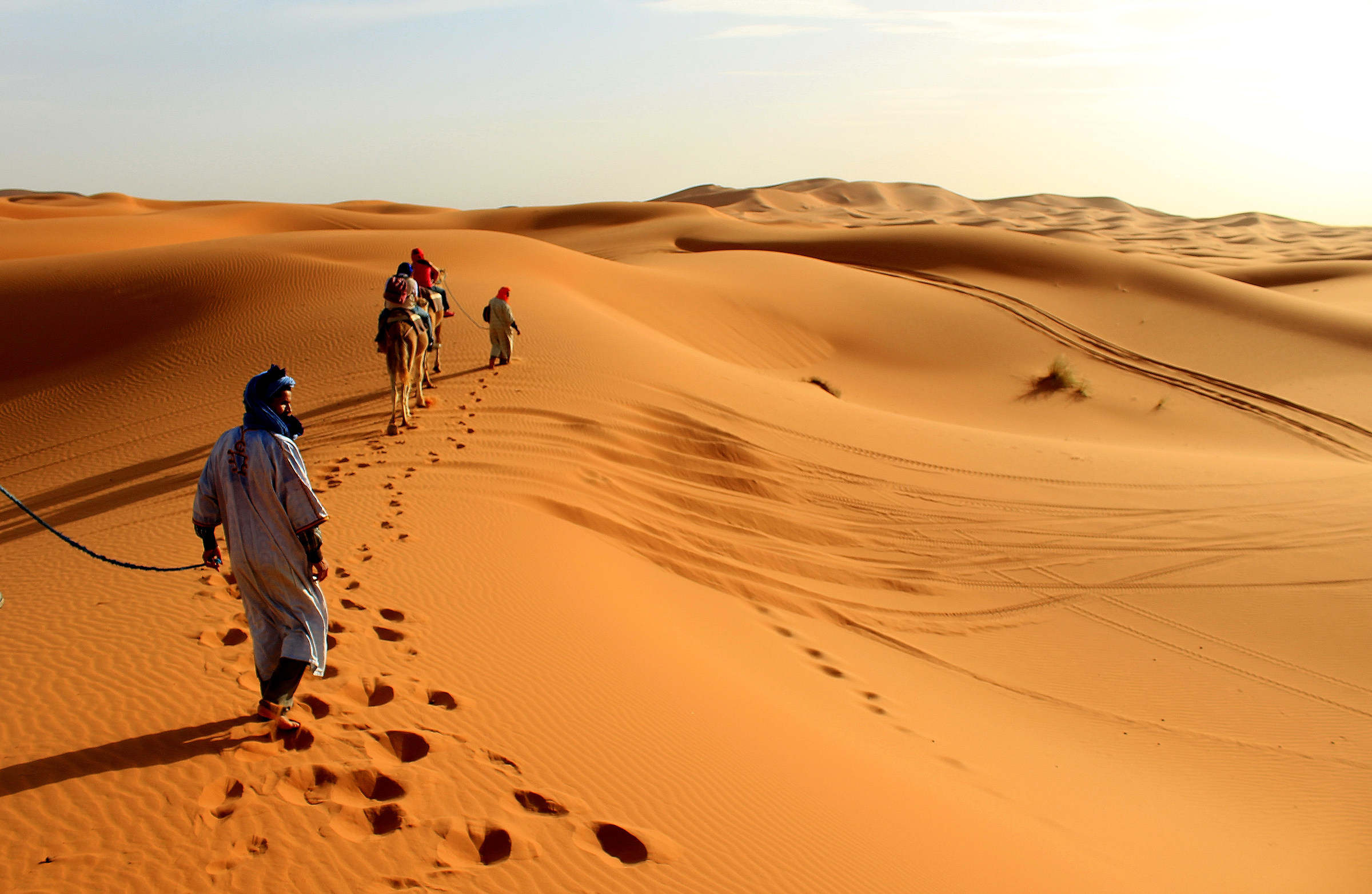 Walk in the desert ......