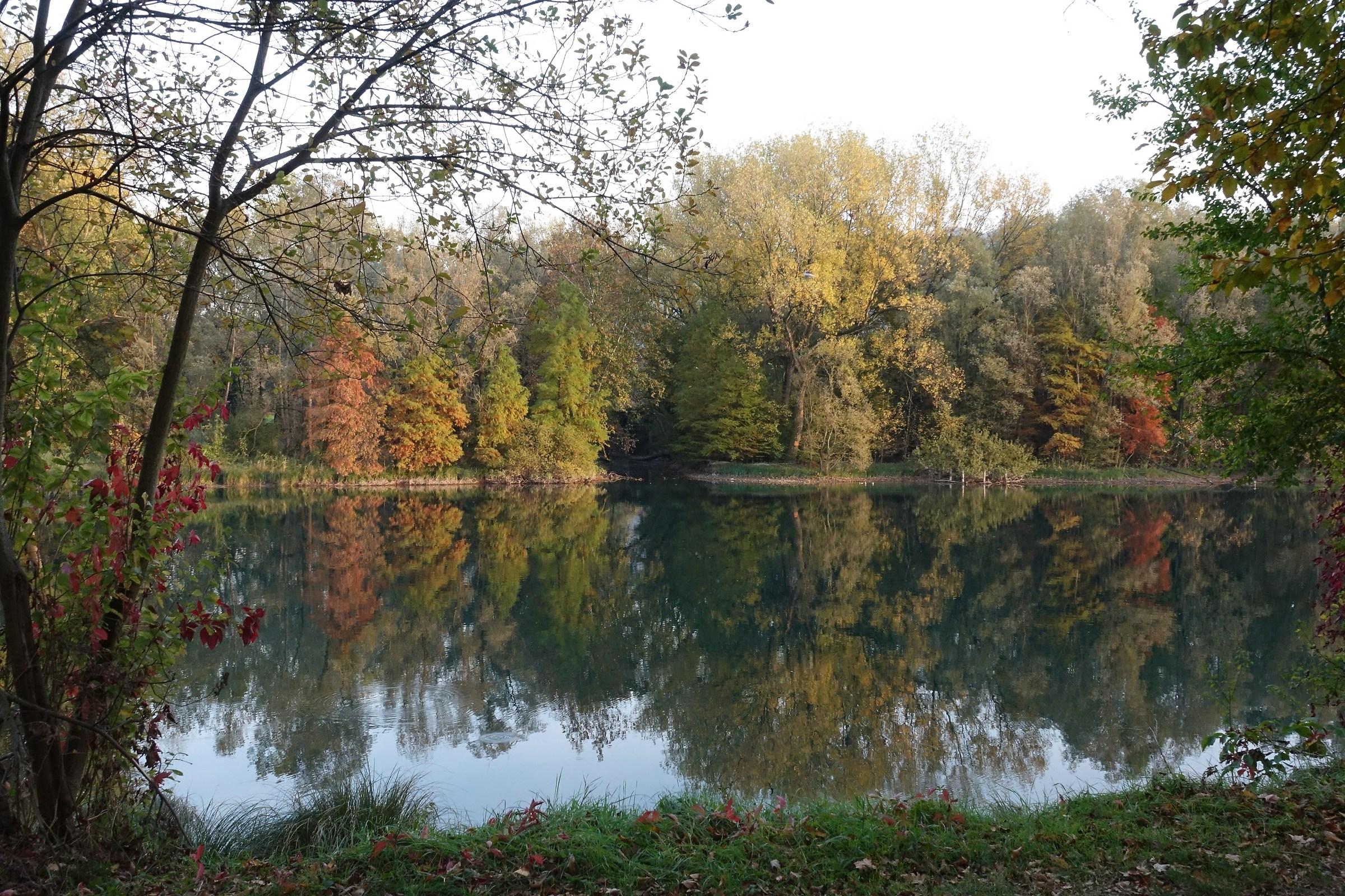 autumn reflections in Adda 2...
