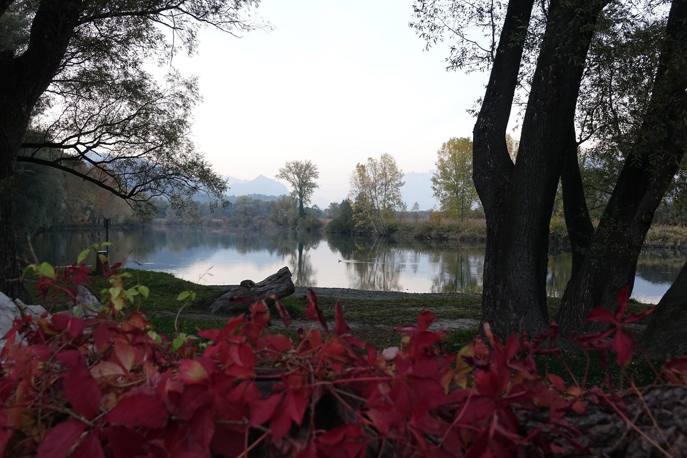Autumn dusk along the Adda...