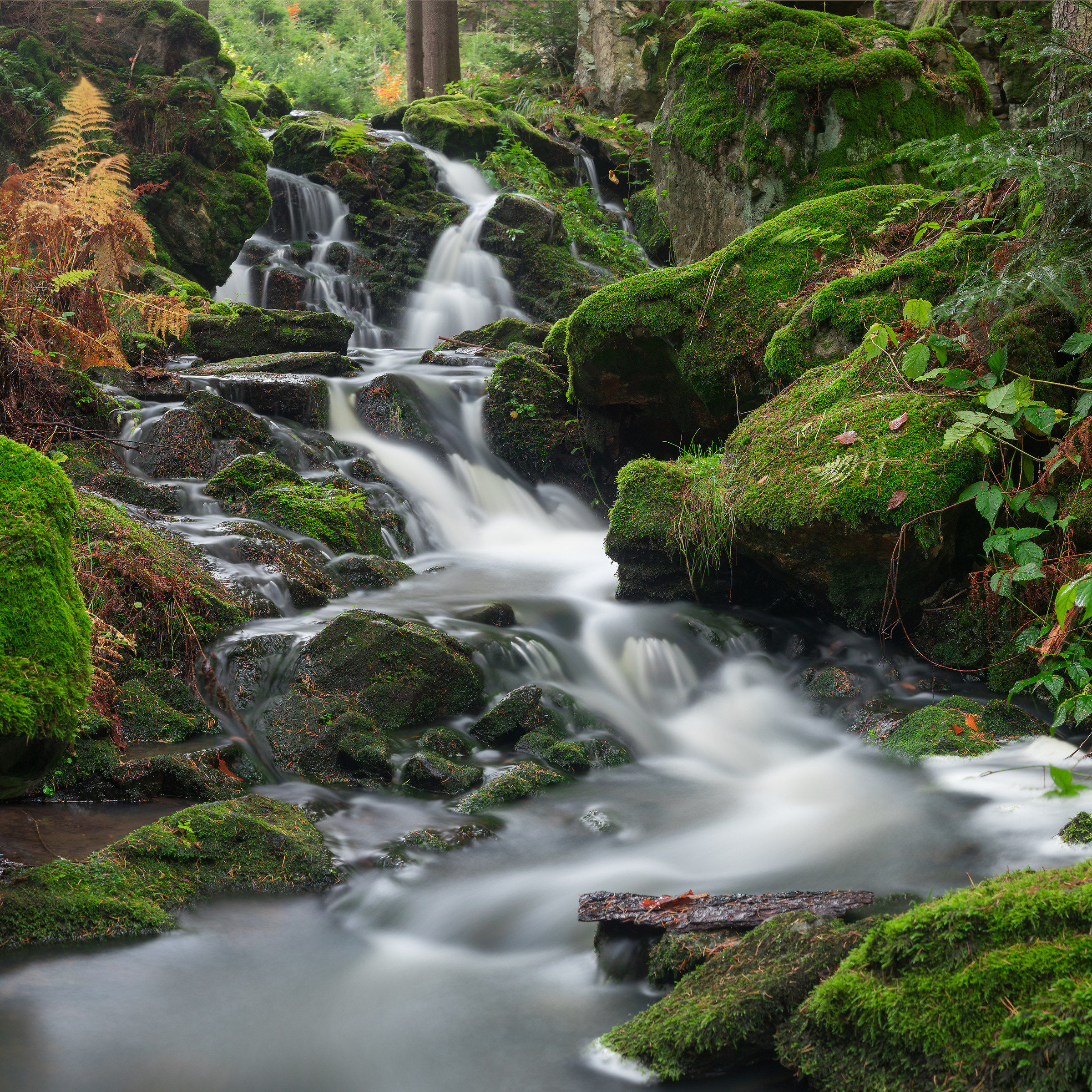 Stone brook...