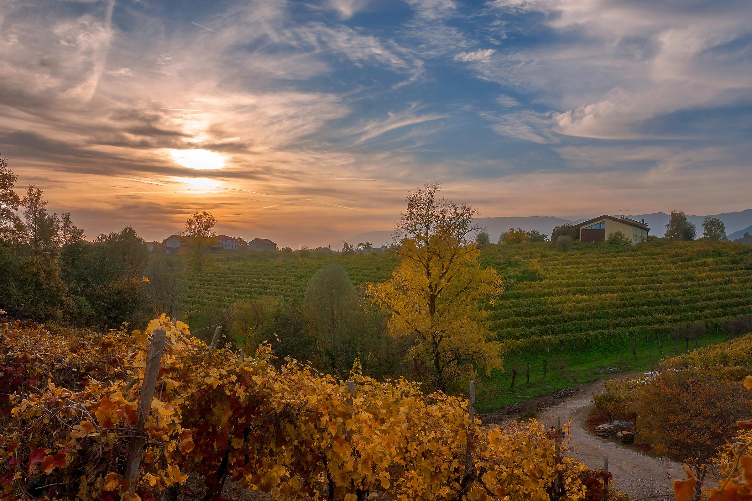 The vineyards of San. Giovanni Valdobbiadene...
