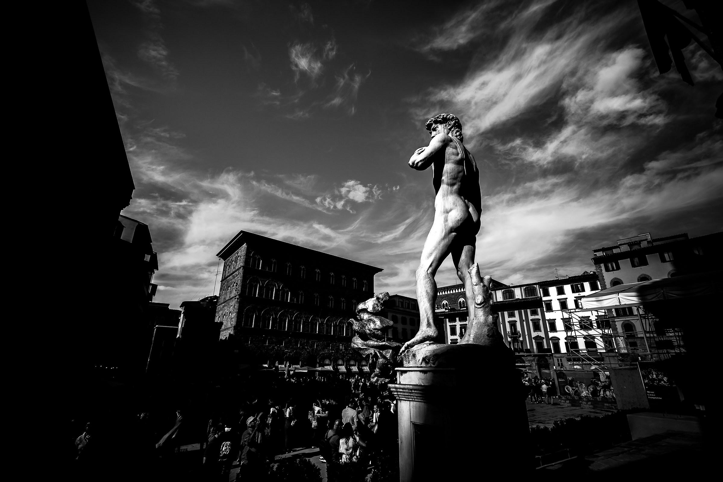 David in Signoria...