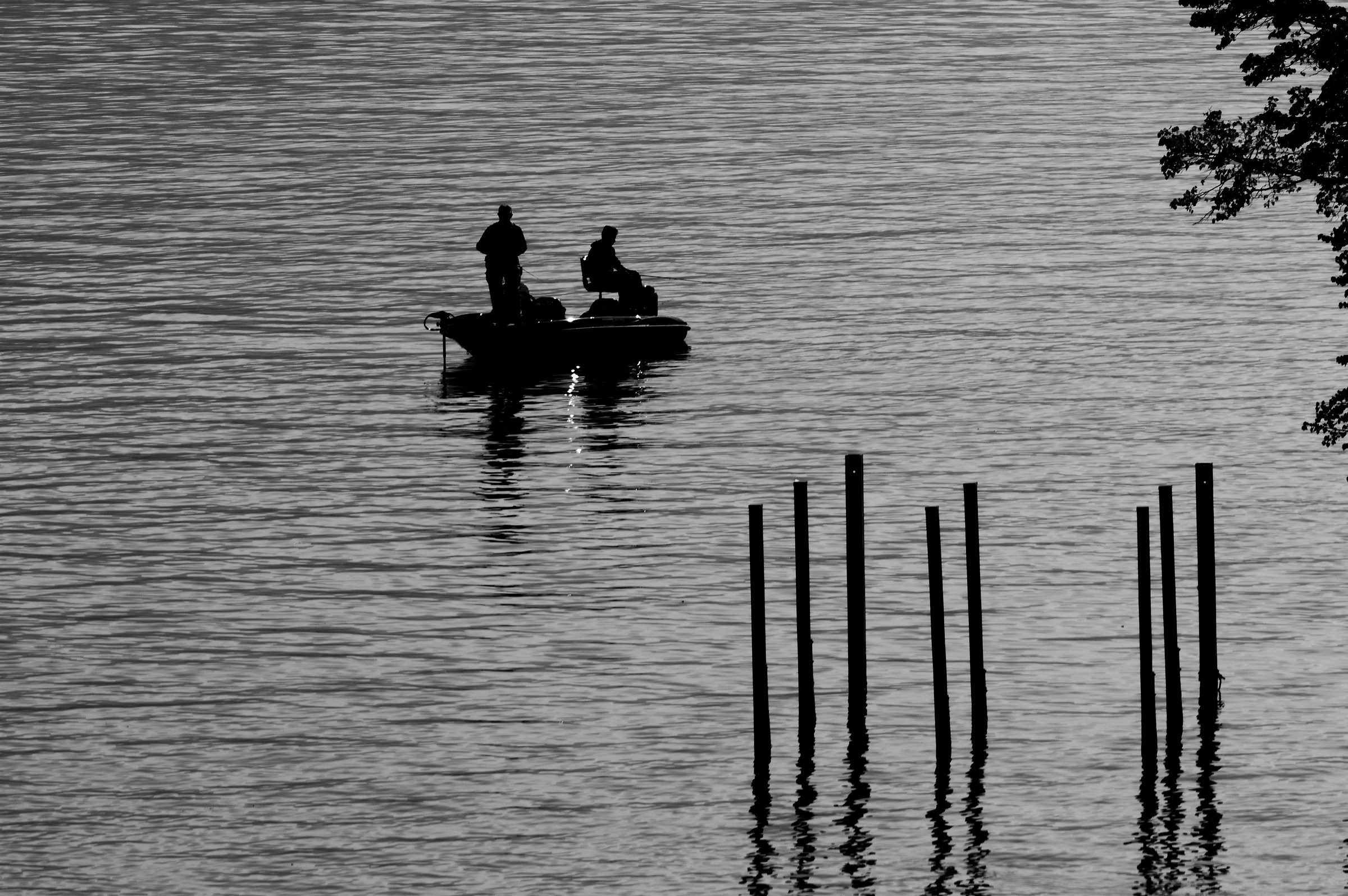 Silhouette nel lago...