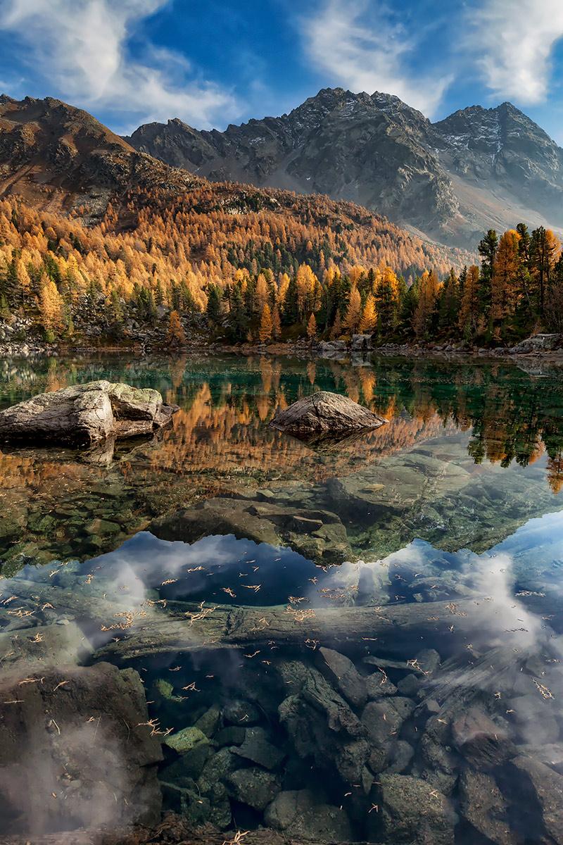 Autumn Transparencies...