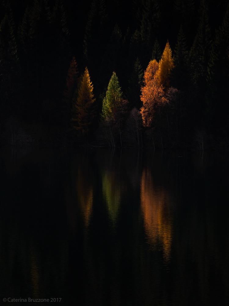 Colors in the dark...