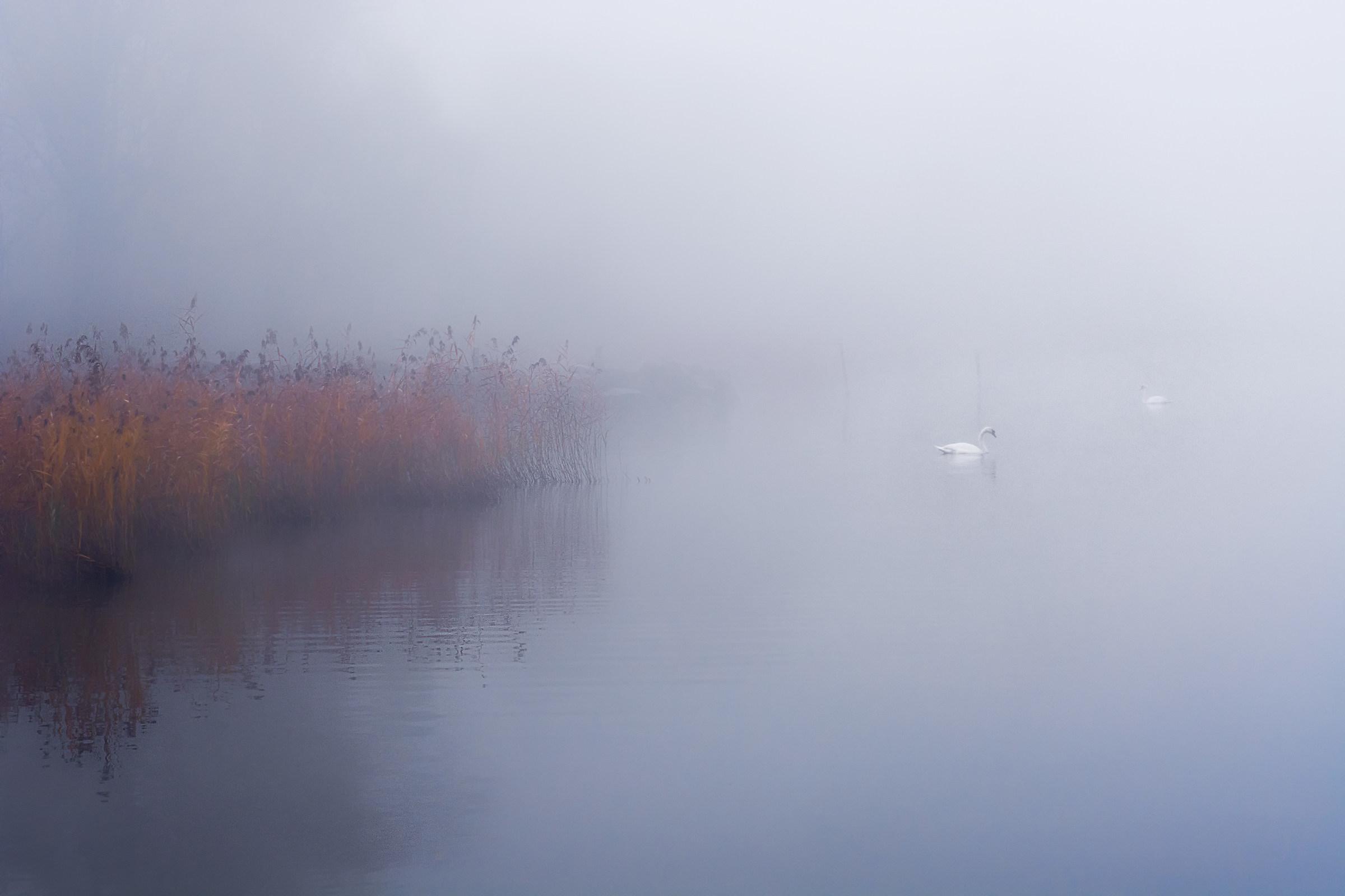 Novembre sul lago di Varese...