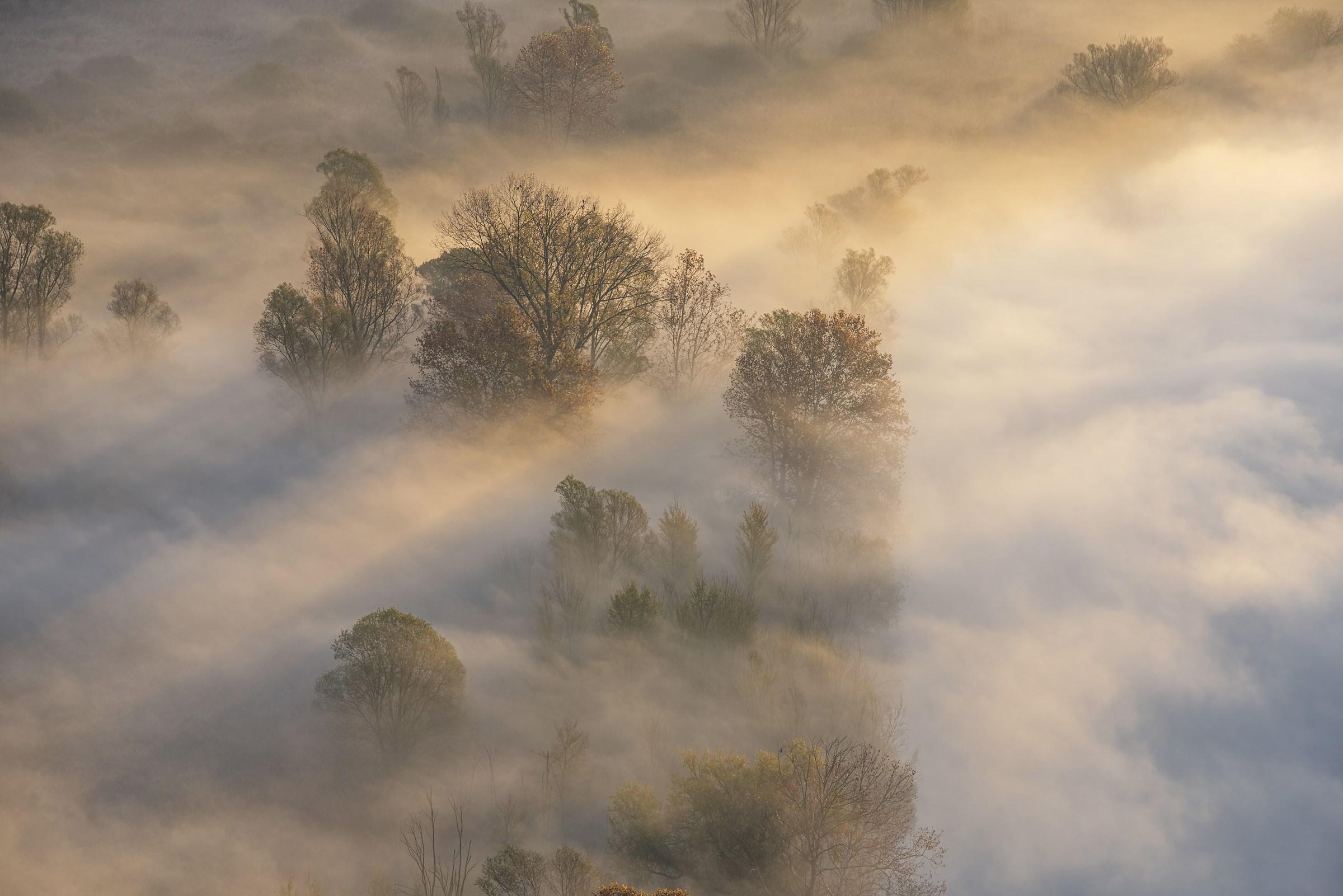 colori nella nebbia...