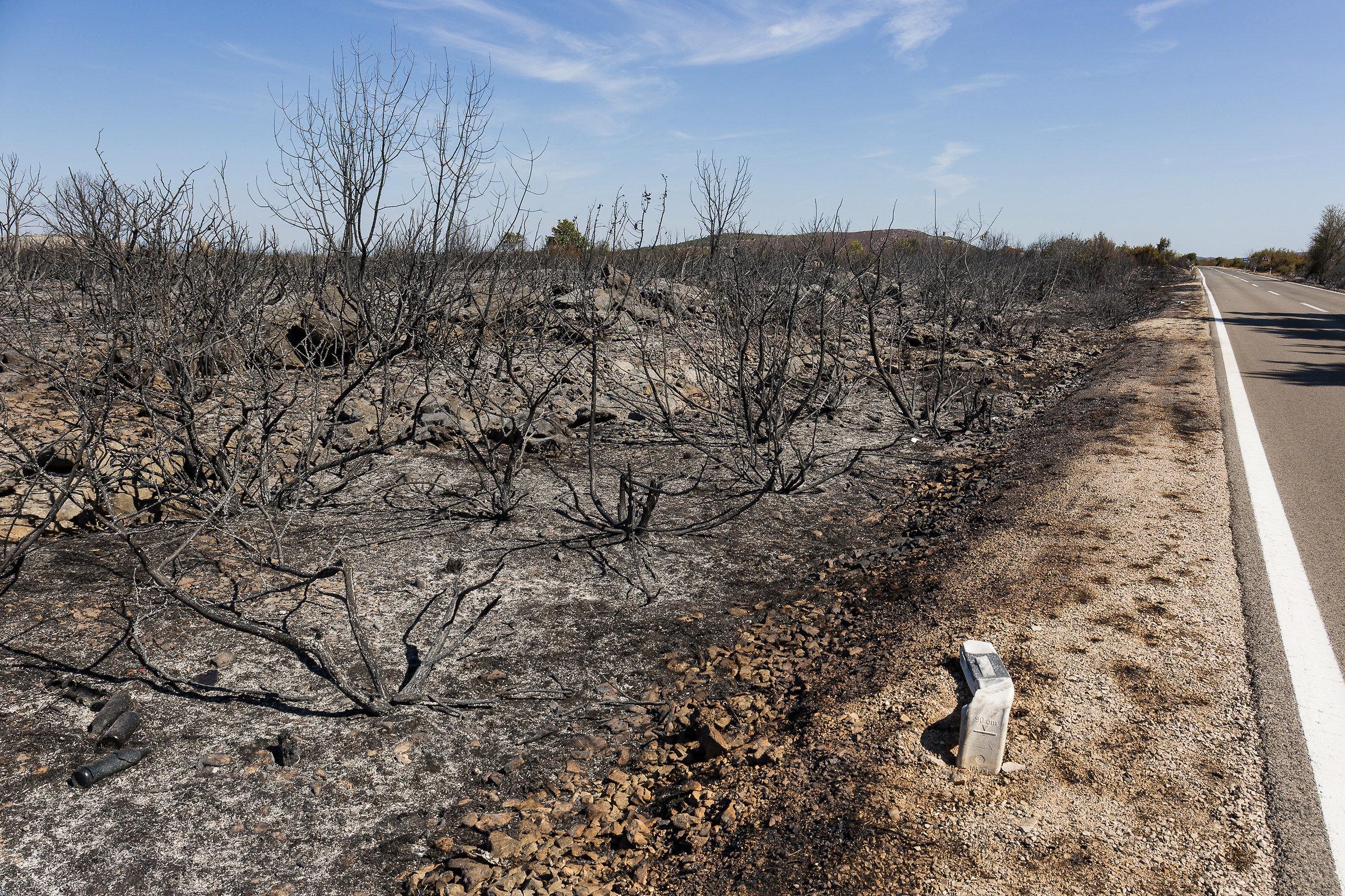 Burnt earth...
