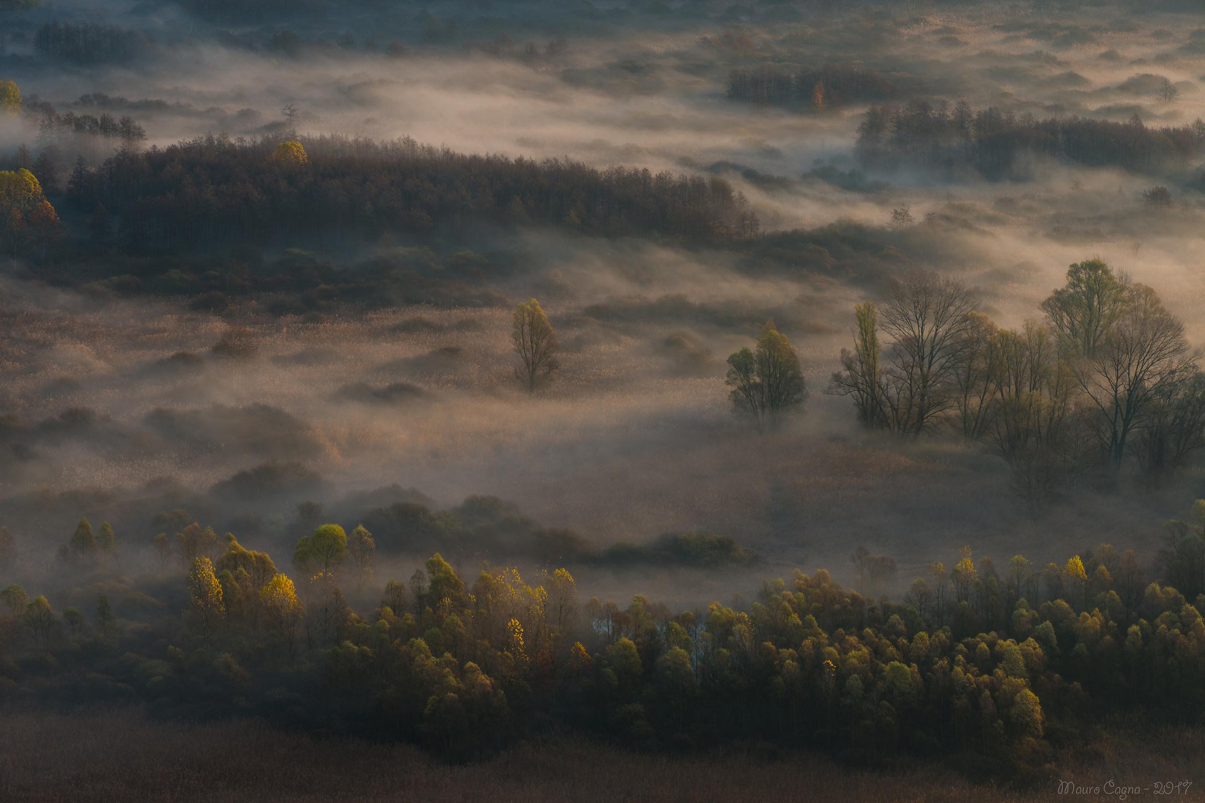 Airuno, nebbia nei boschi...