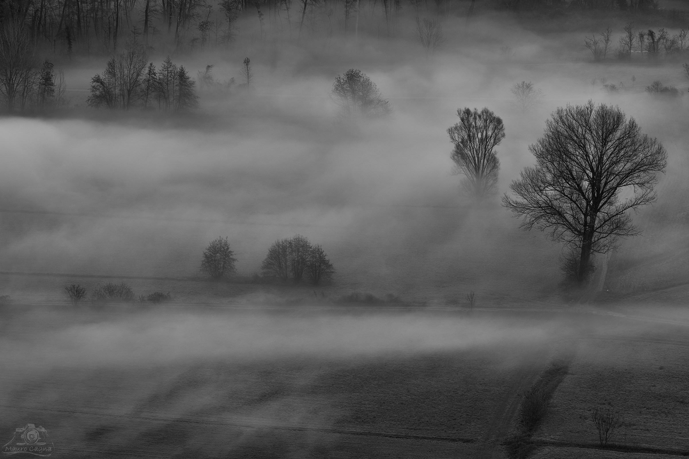 Airuno, nebbia in B&N...
