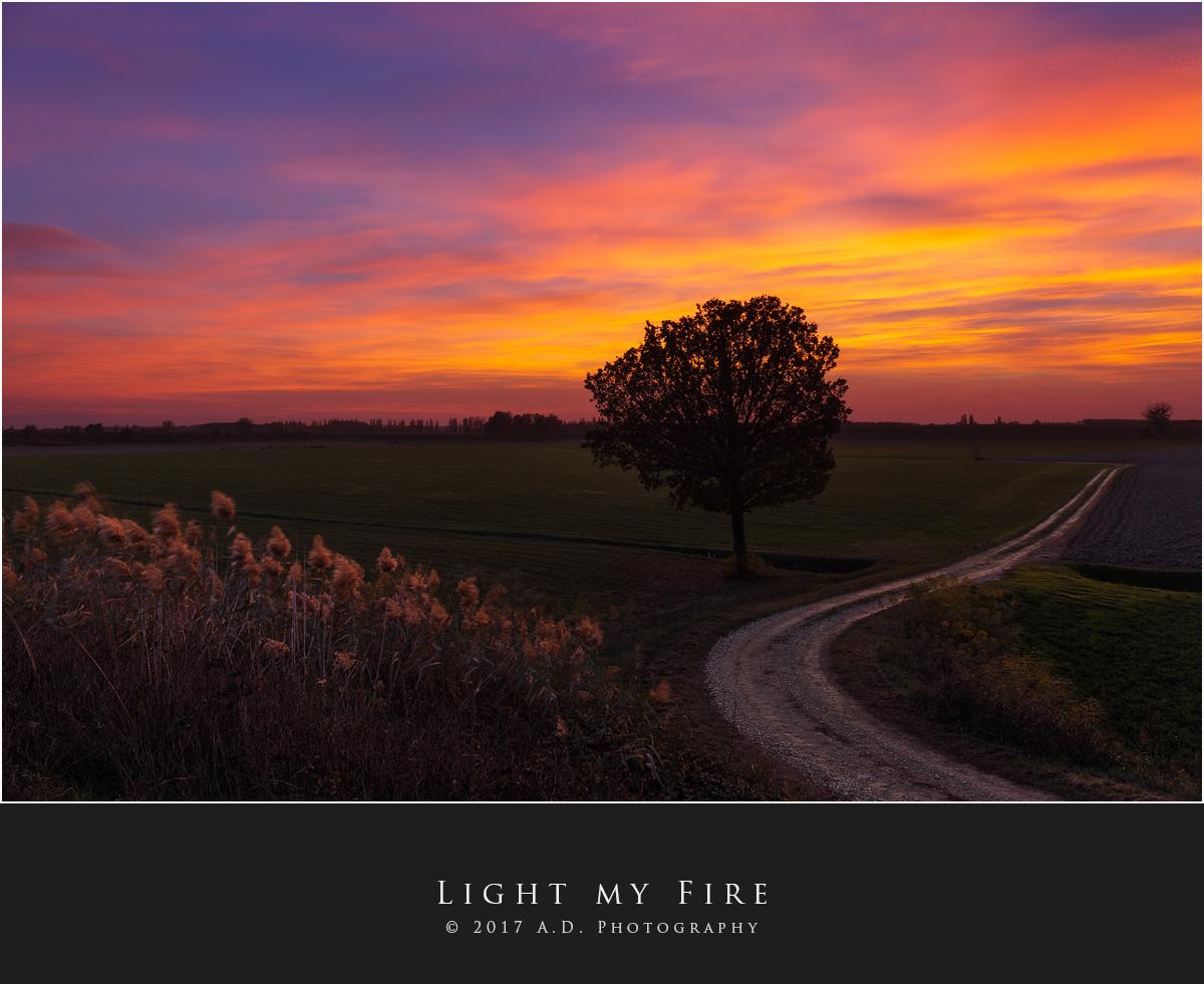 Light my Fire...