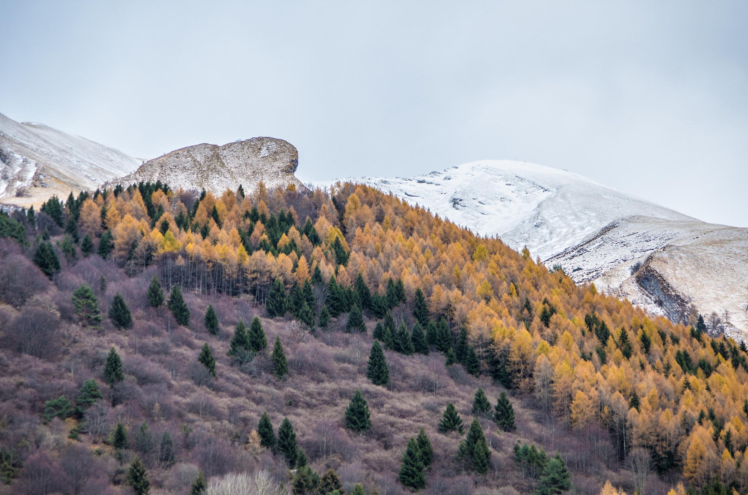 La criniera del Monte Serva...