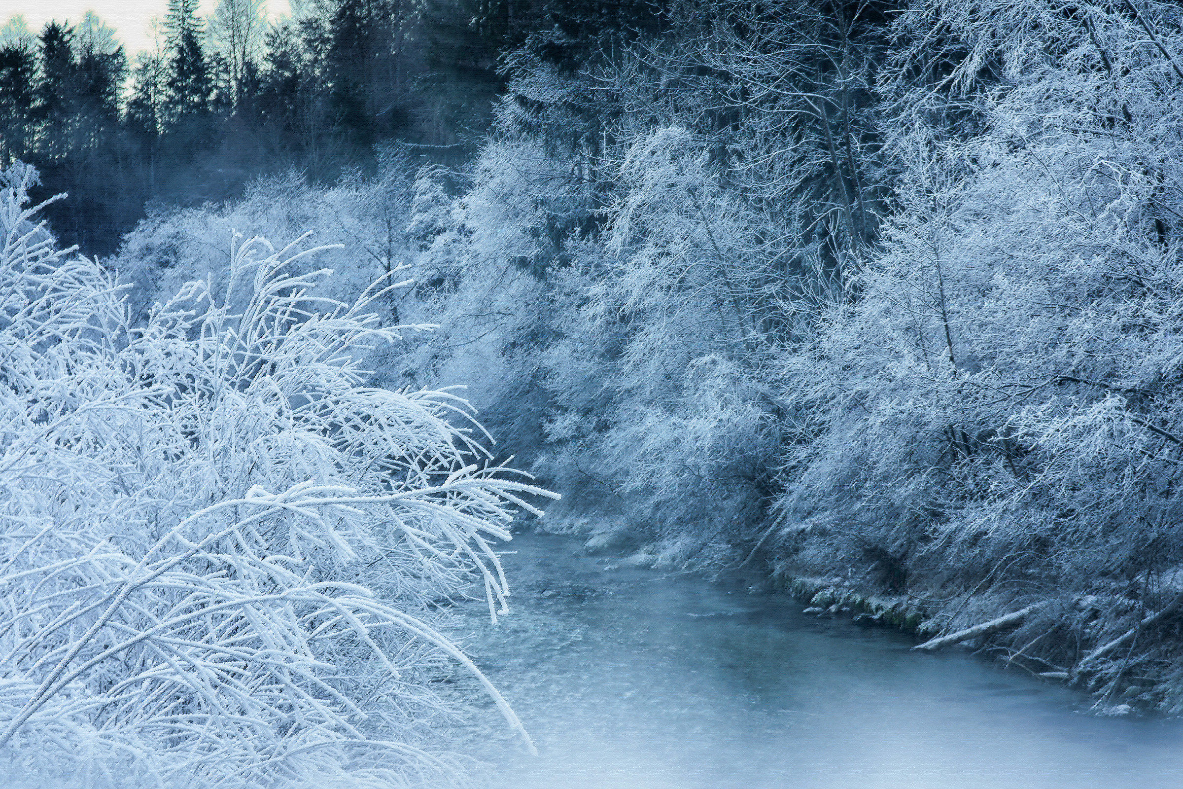 Welcome winter...