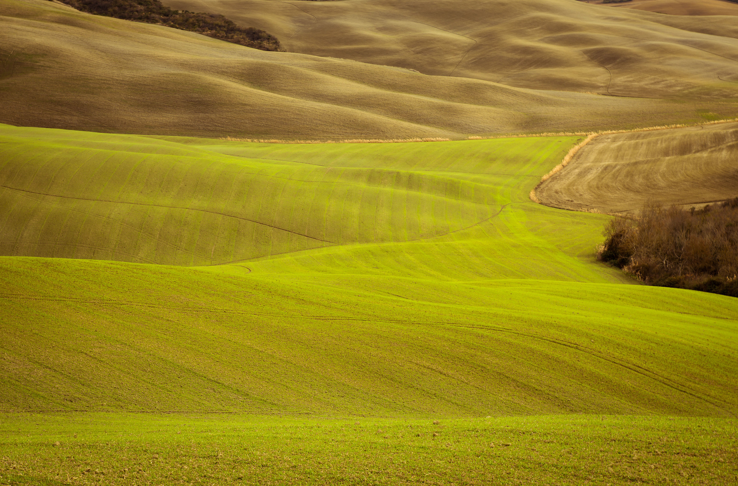 Val d'orcia...