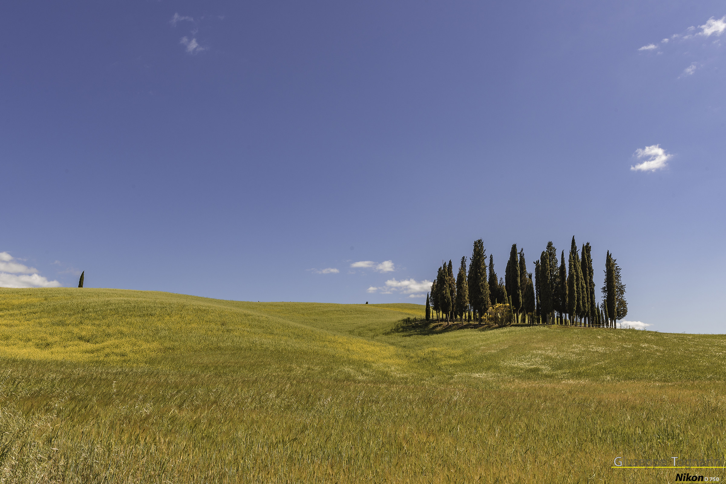 walking in Val d'Orcia...