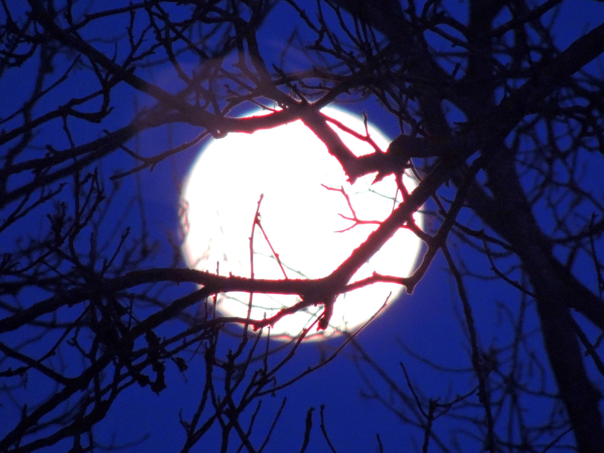 full moon in January...