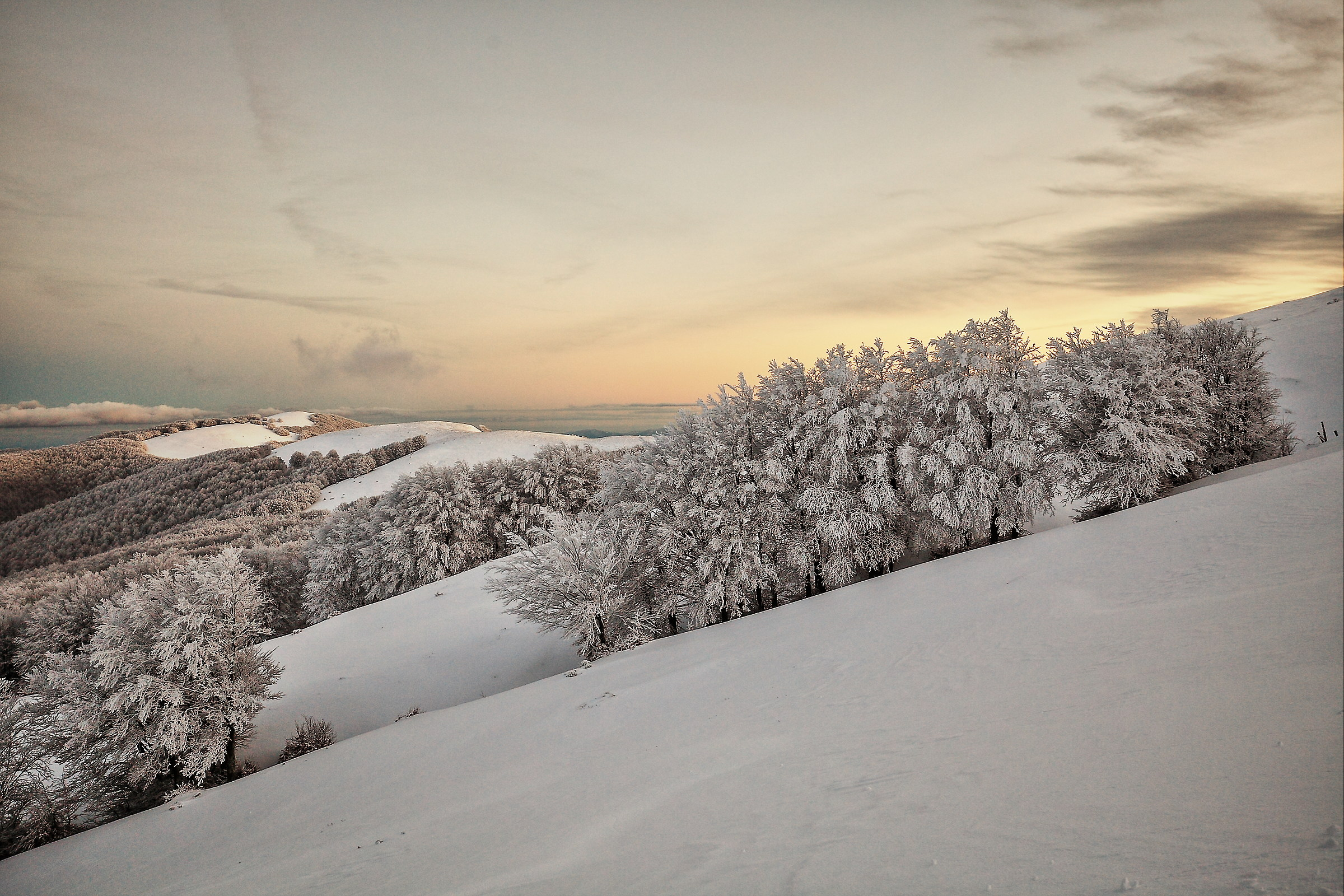 Snowy sunset in the Pratomagno...