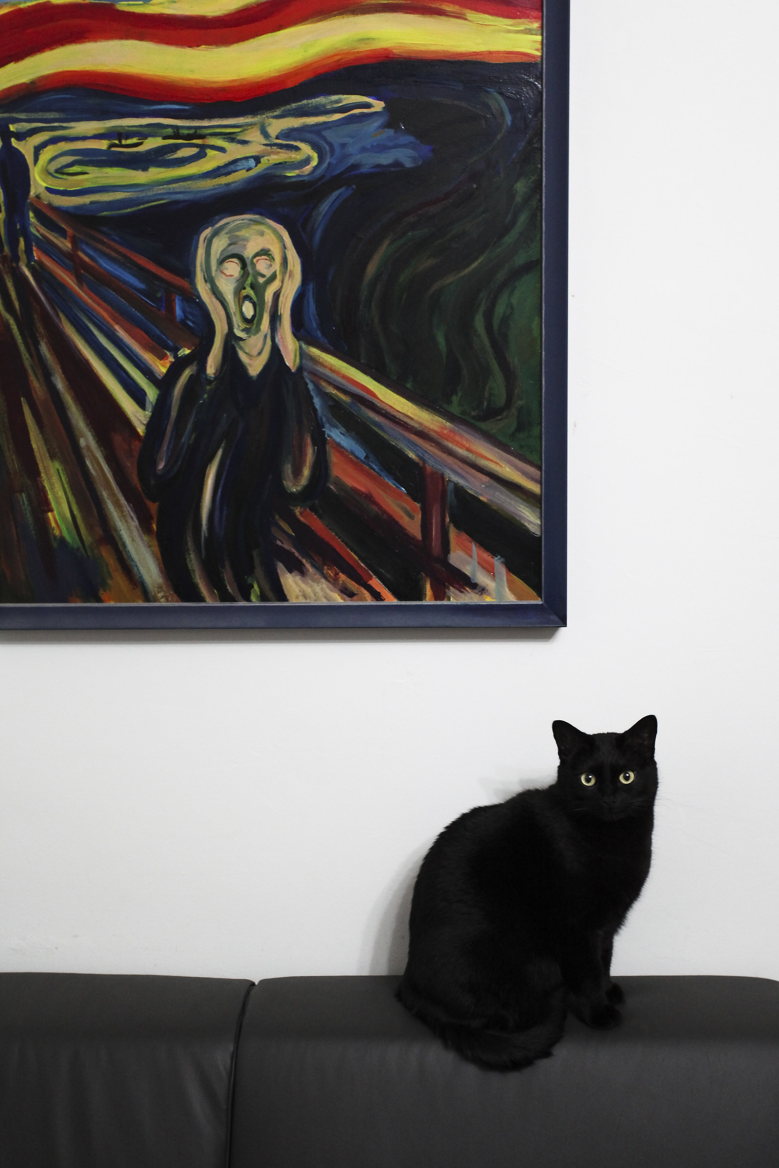 The scream of Morgana...