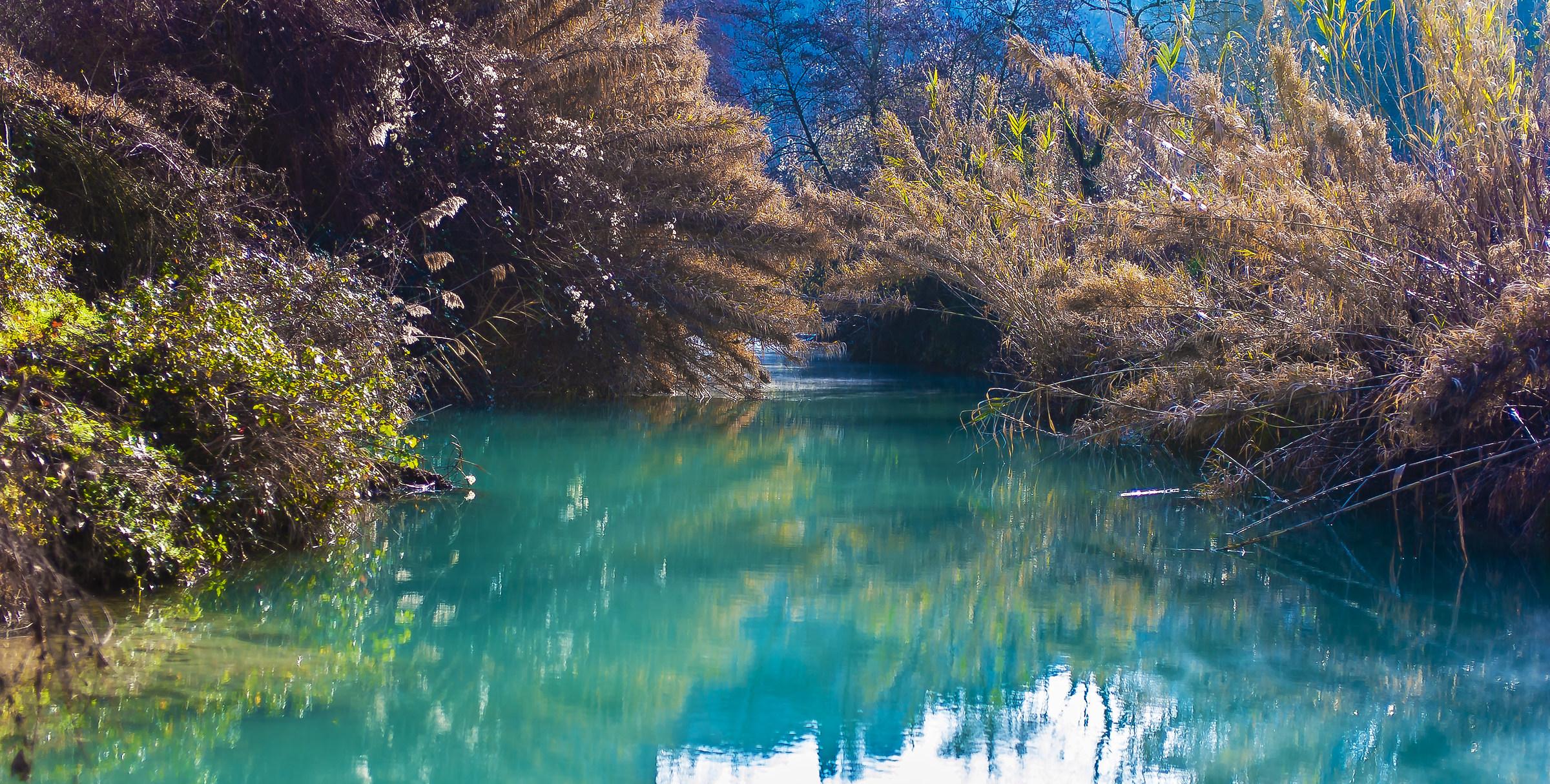 I colori della Natura 3...