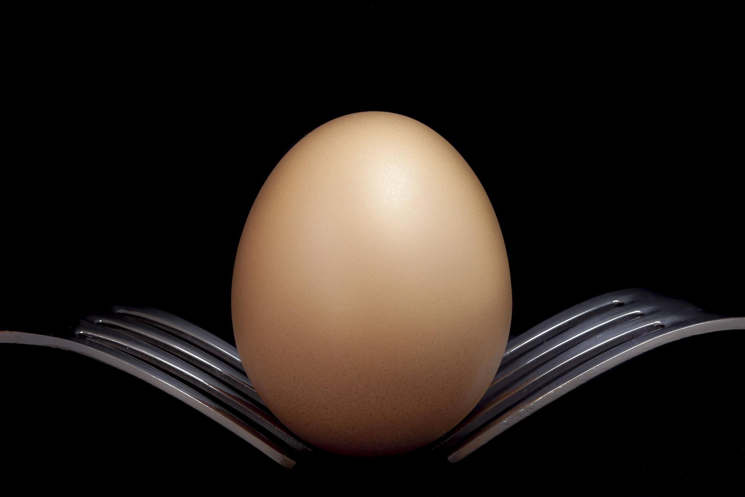 Egg...