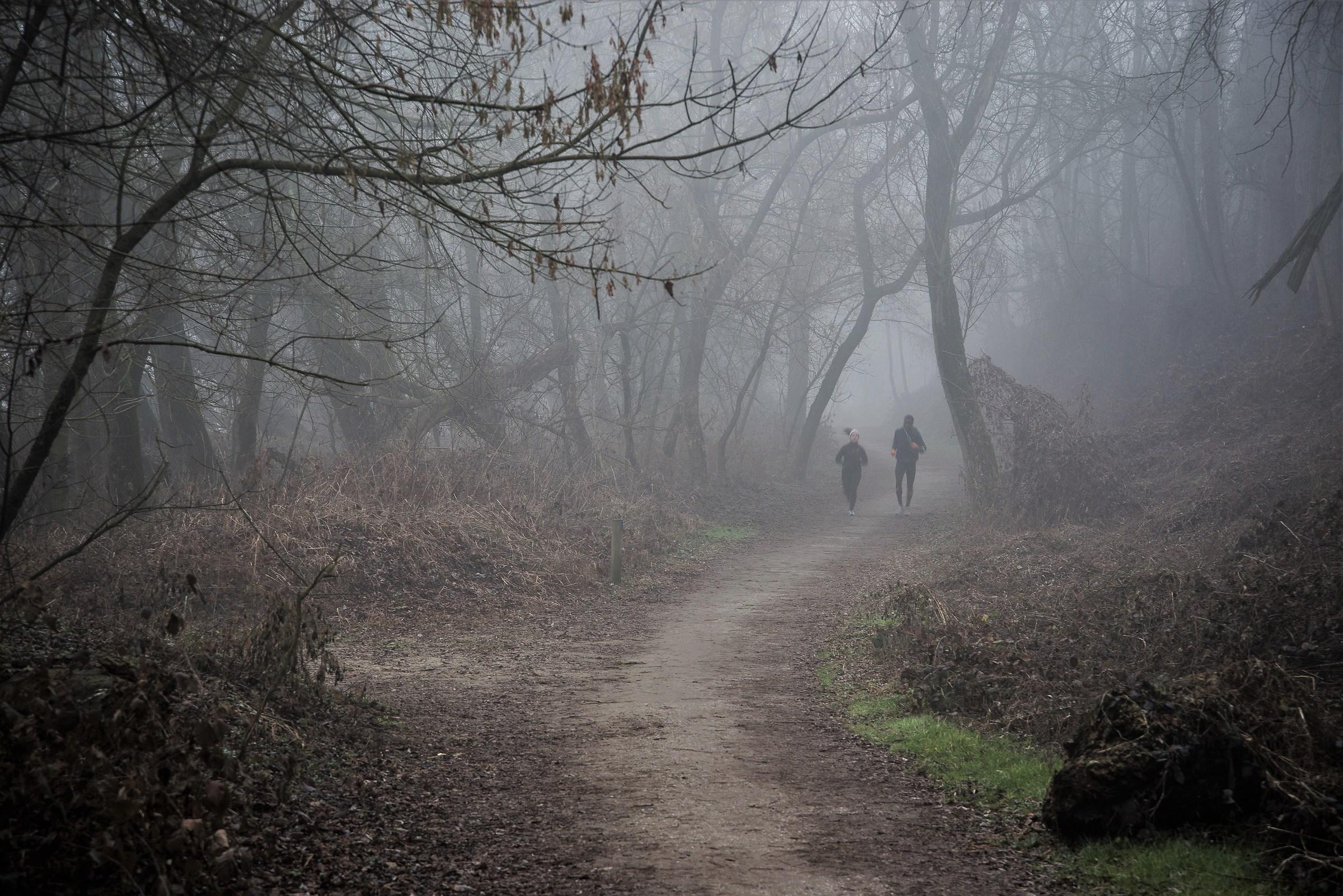 Salt fog ......