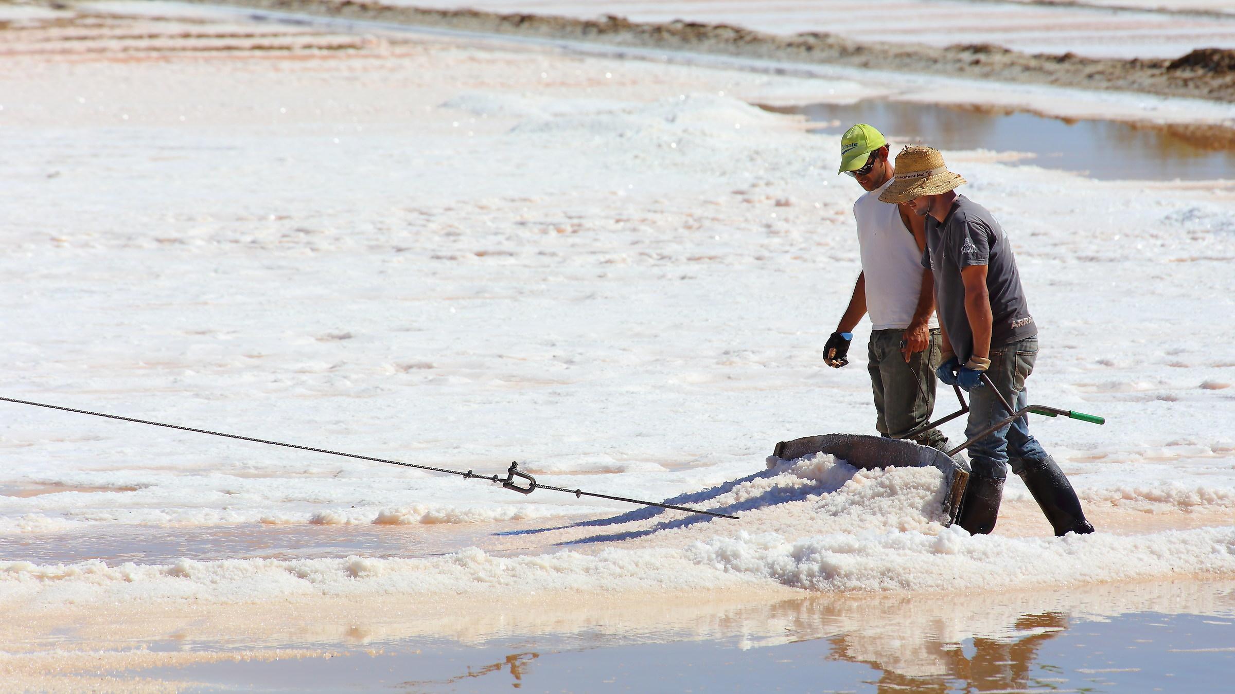 The salt farmers...