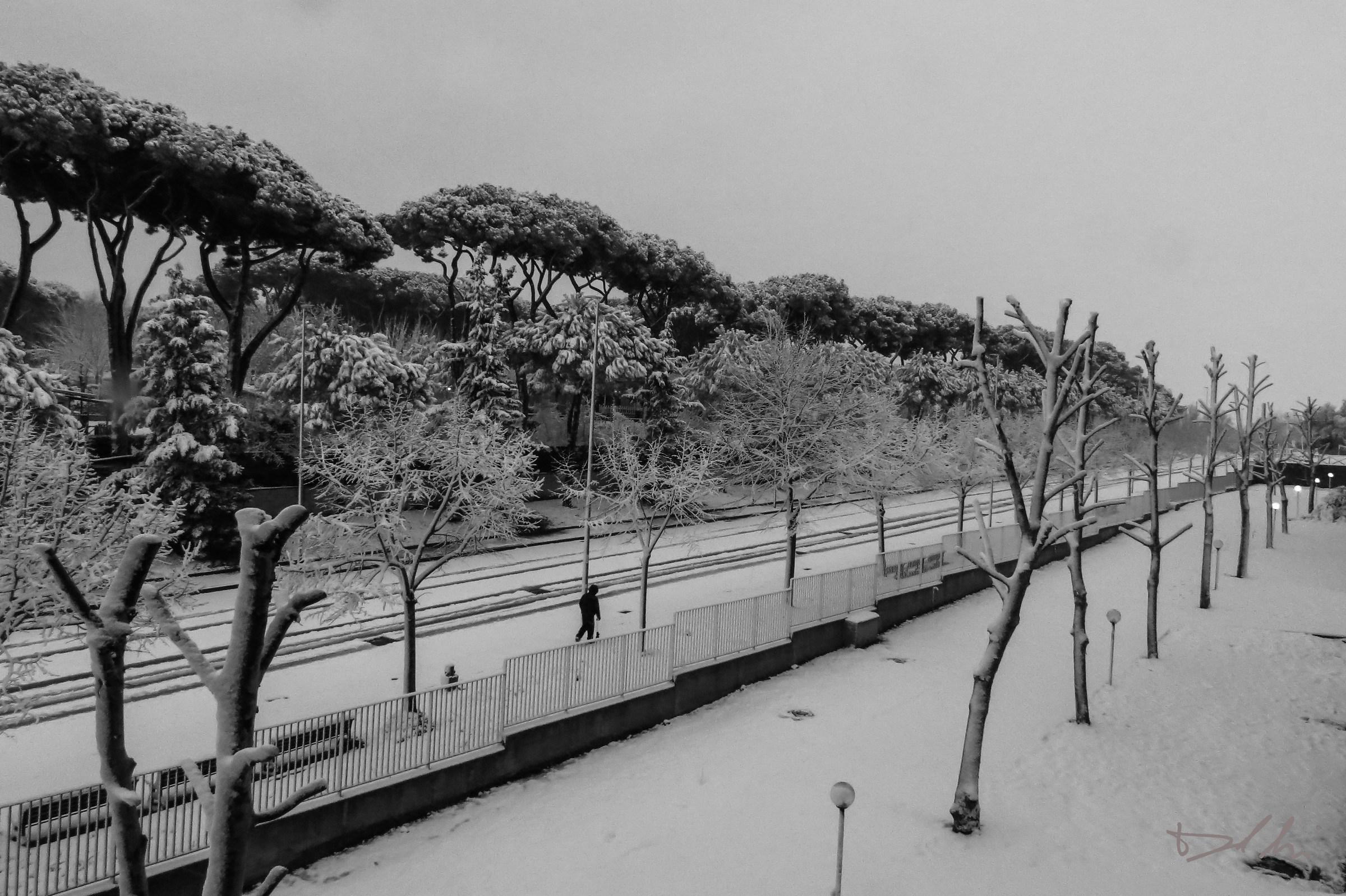 Neve a Roma b/n...