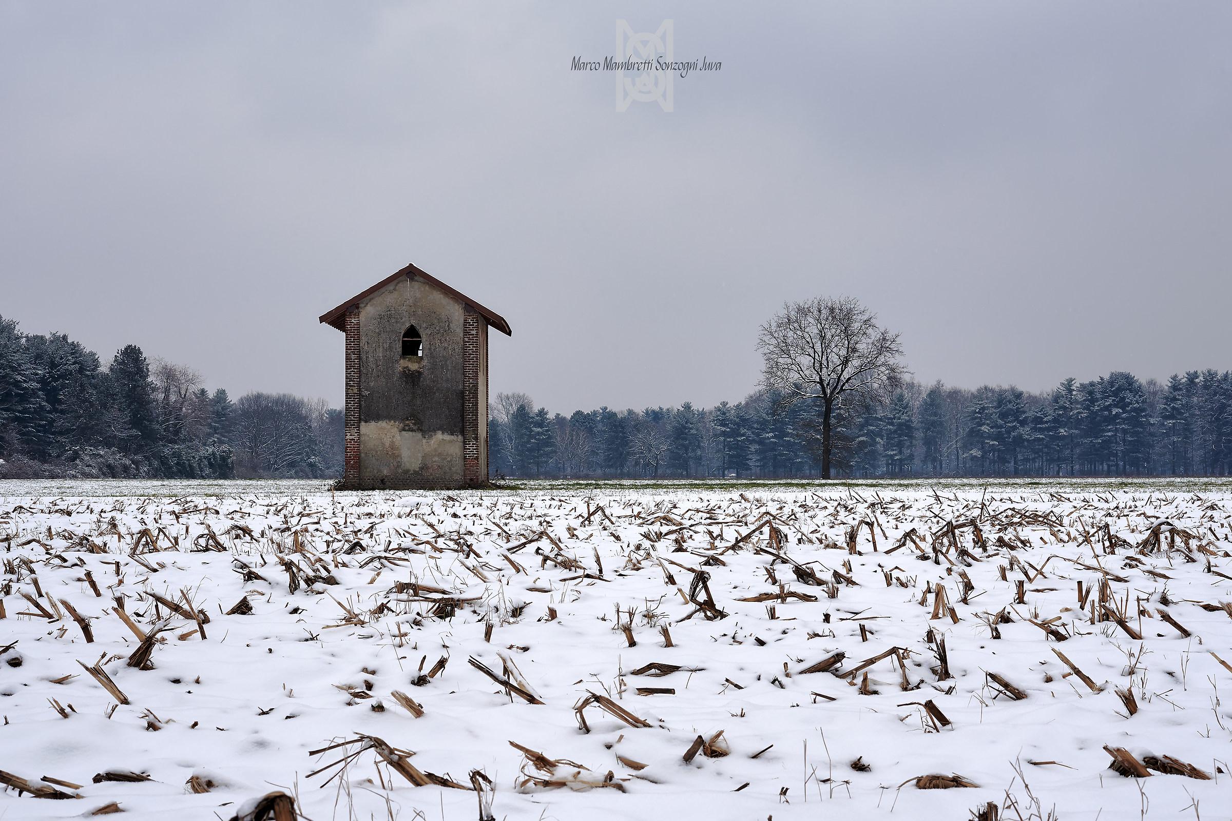 D'inverno in pianura...