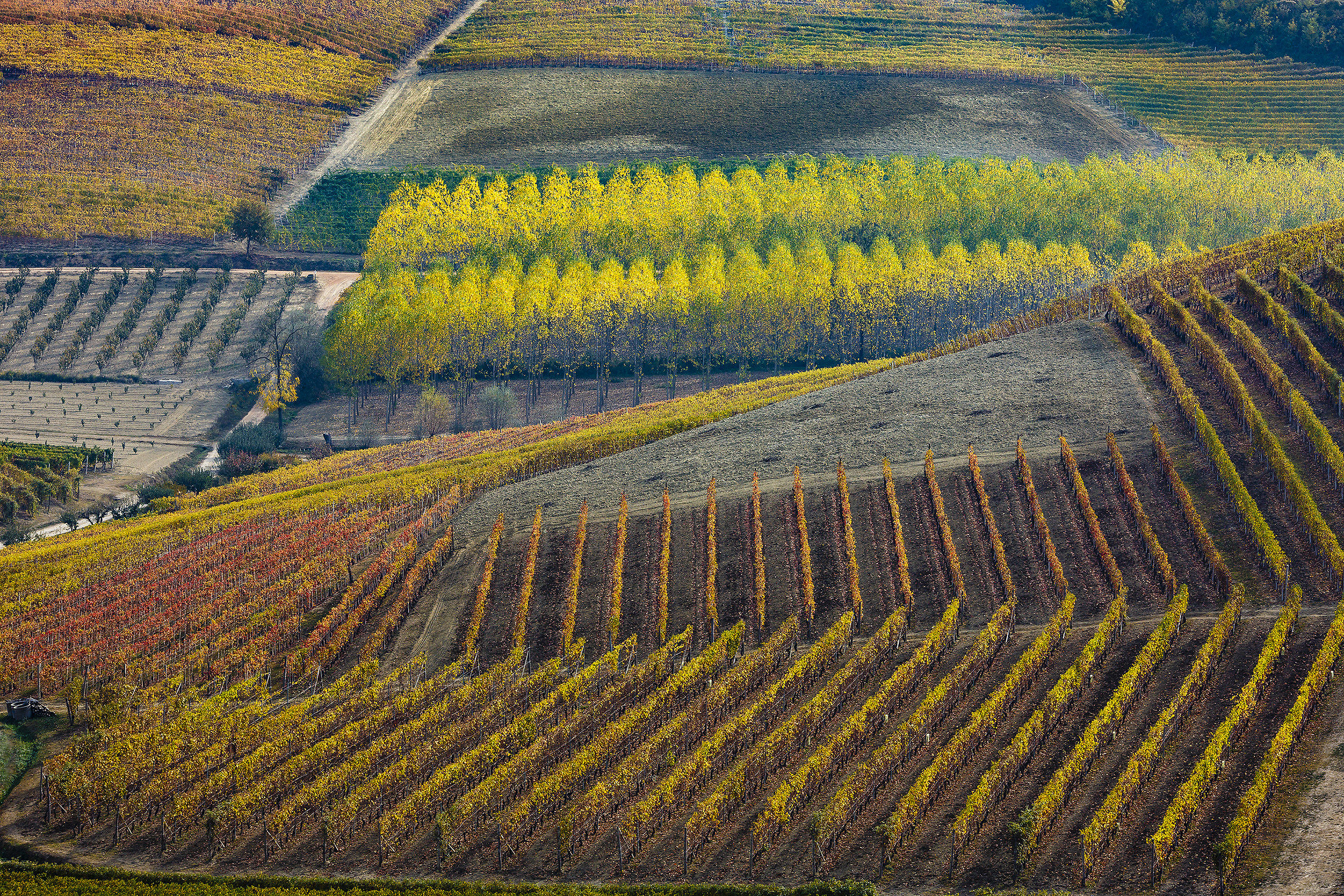 Lands of wines....