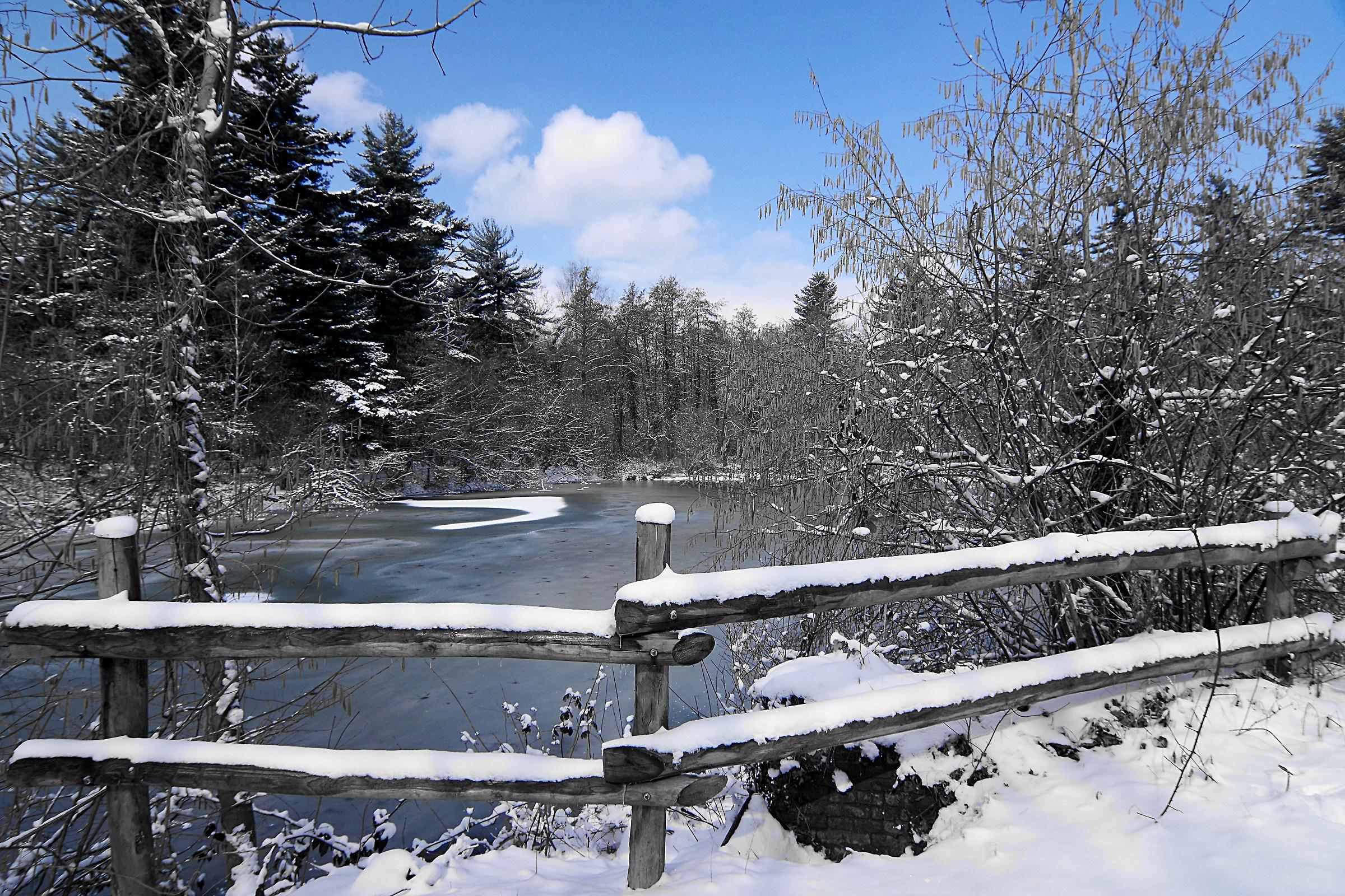 Winter at the Mandria...