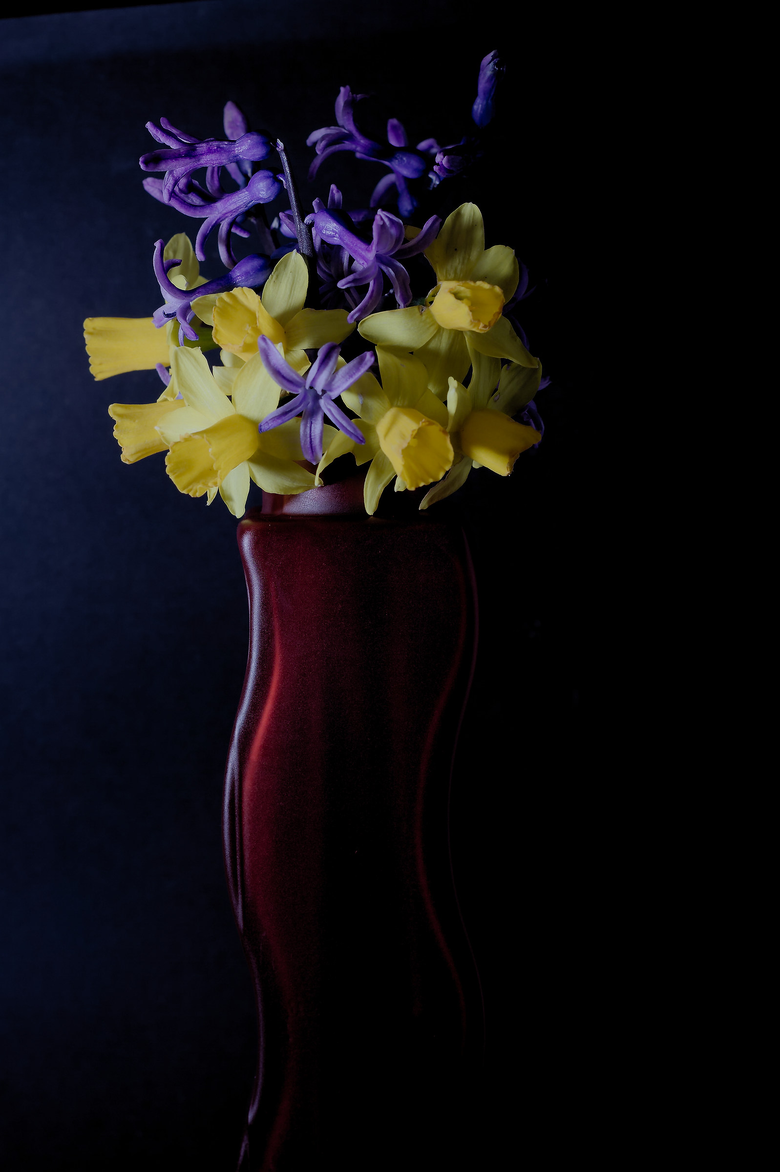 my flowers...