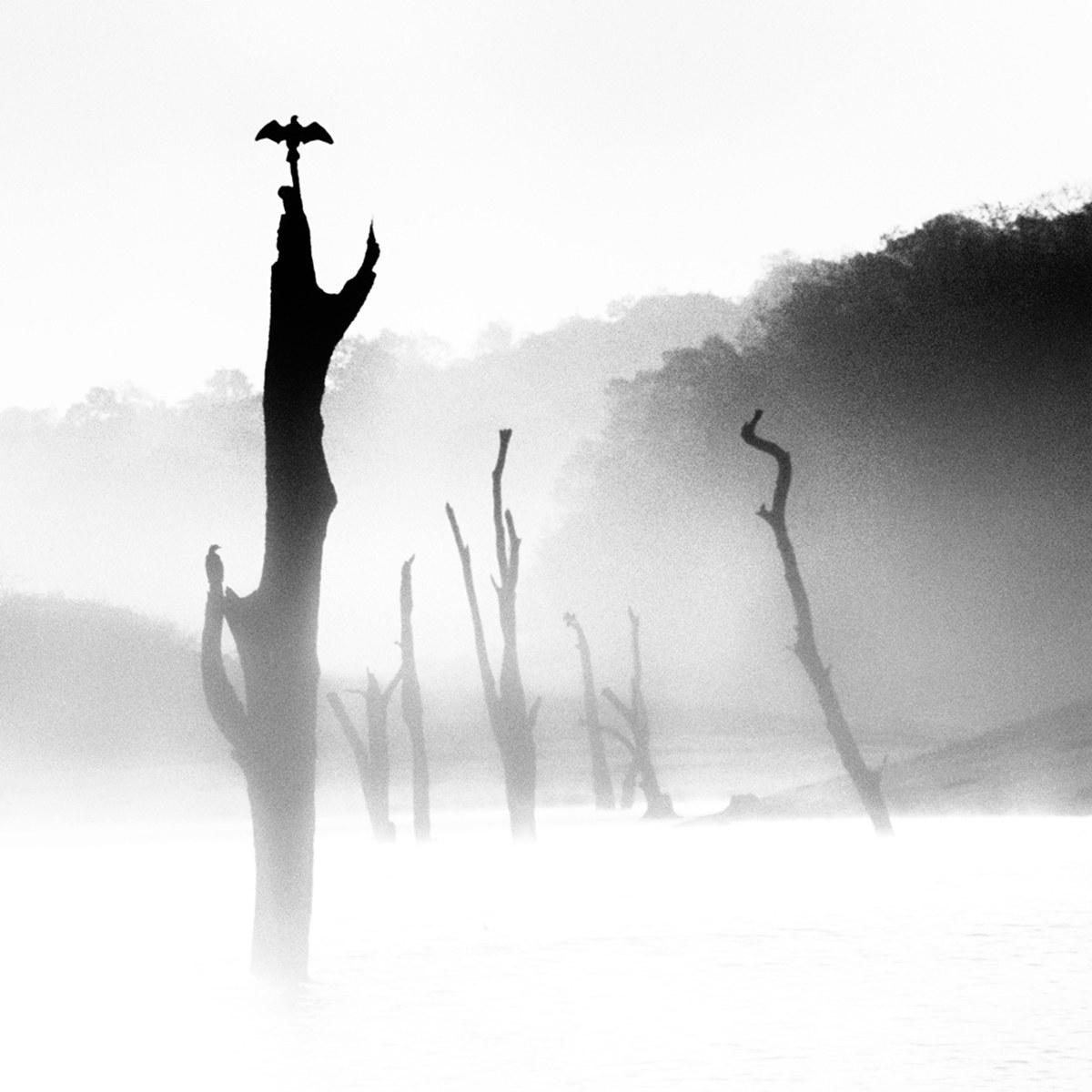 Where The Eagles Fly - Kerala '80...