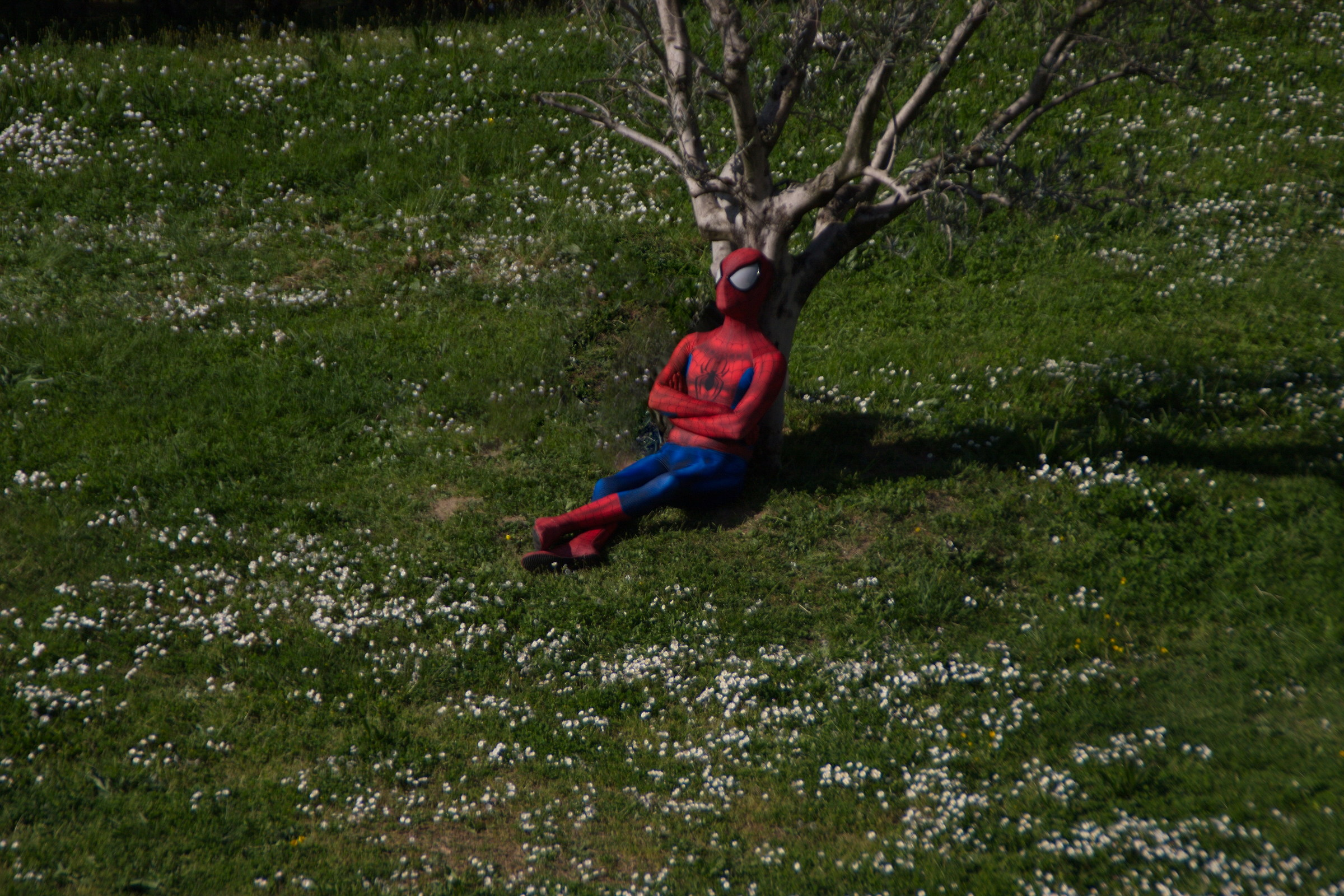 Instead of taking pictures, l & #39; Spiderman rests ......