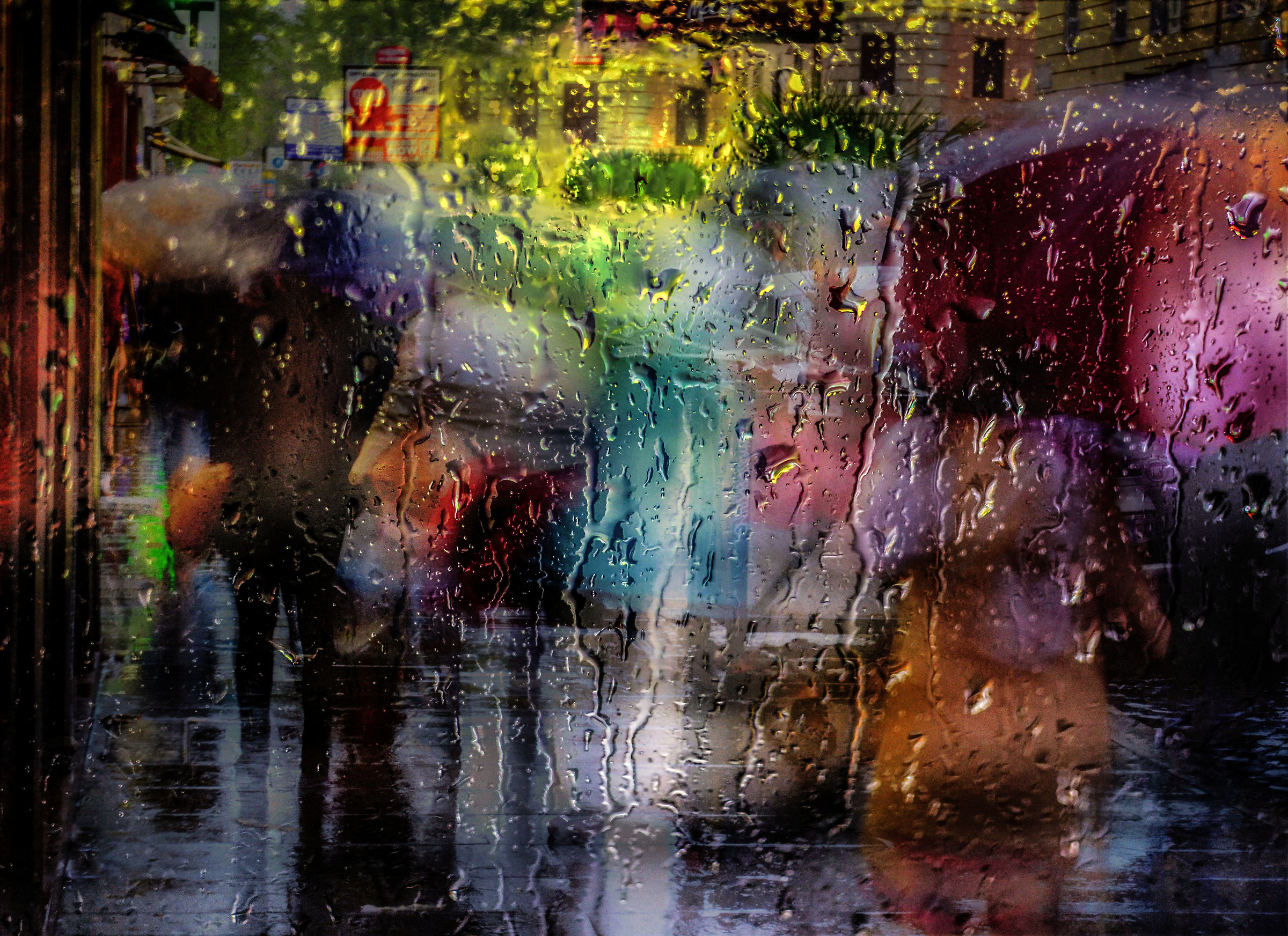 ... an afternoon in the rain...
