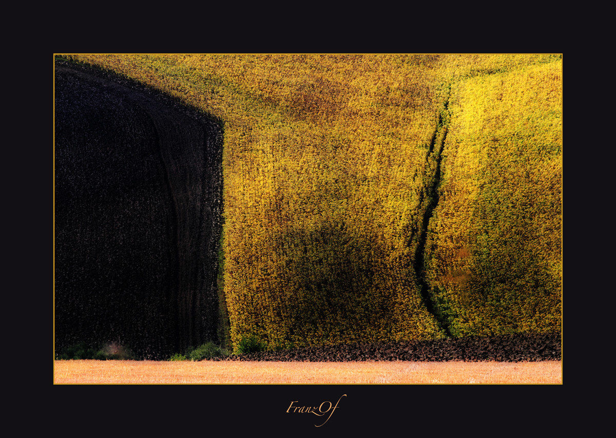 Abstract...
