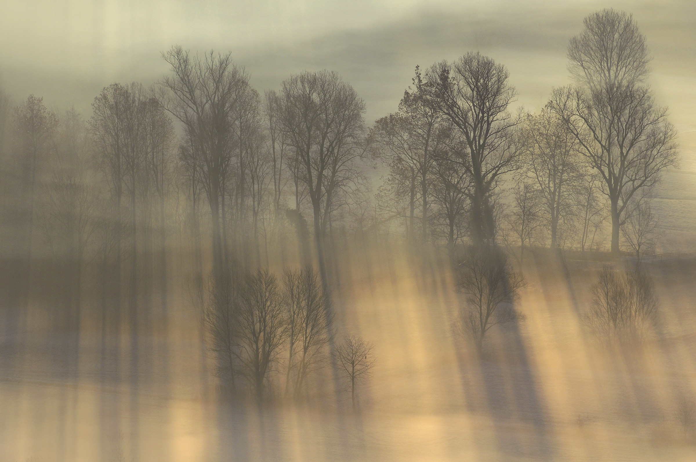 luci ed ombre alla piana dell' Adda...
