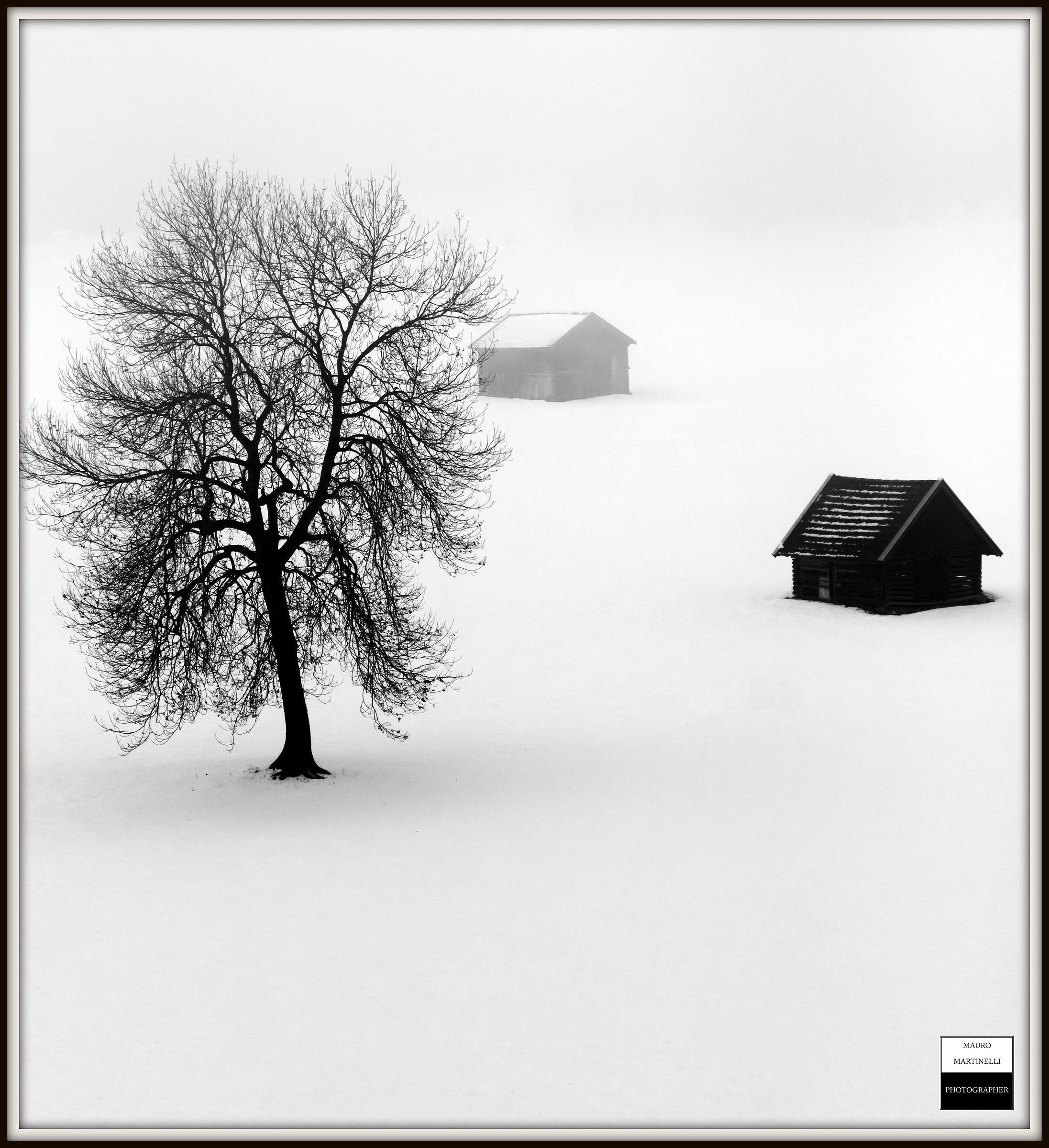 Winter ( Austria )...