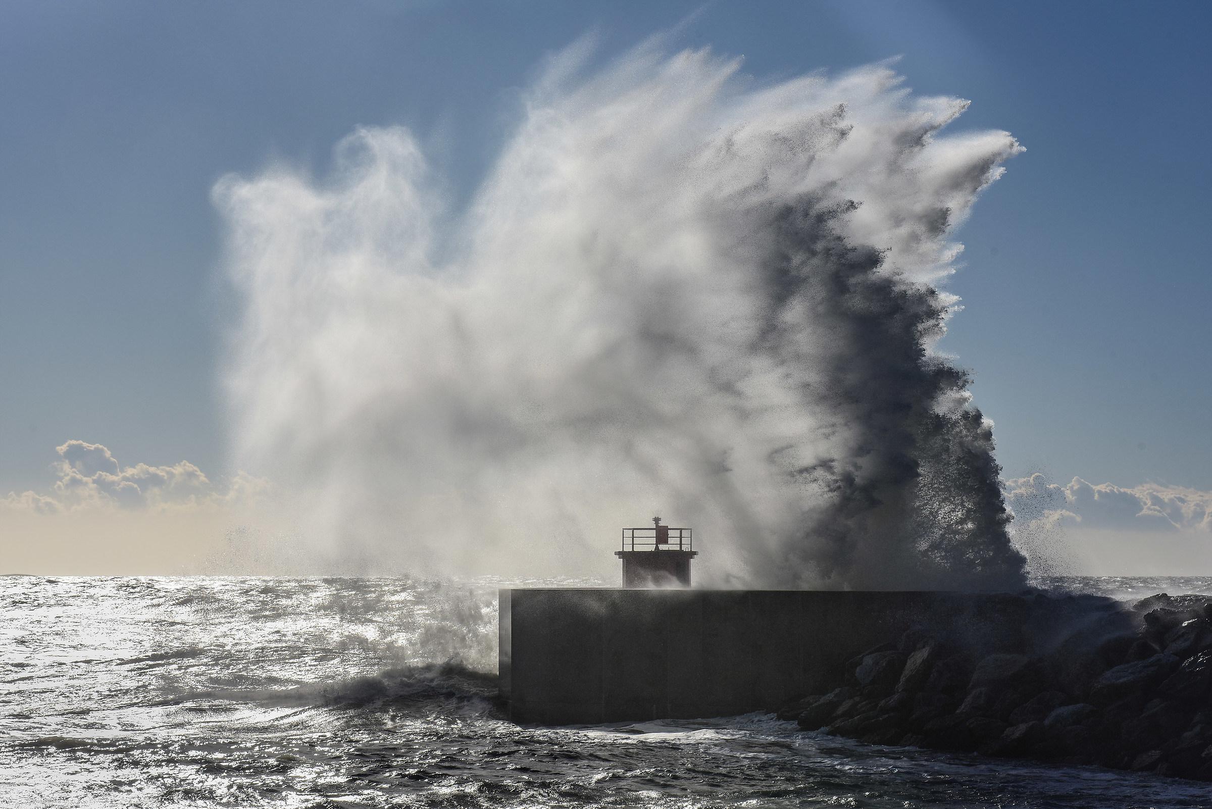sea strong...